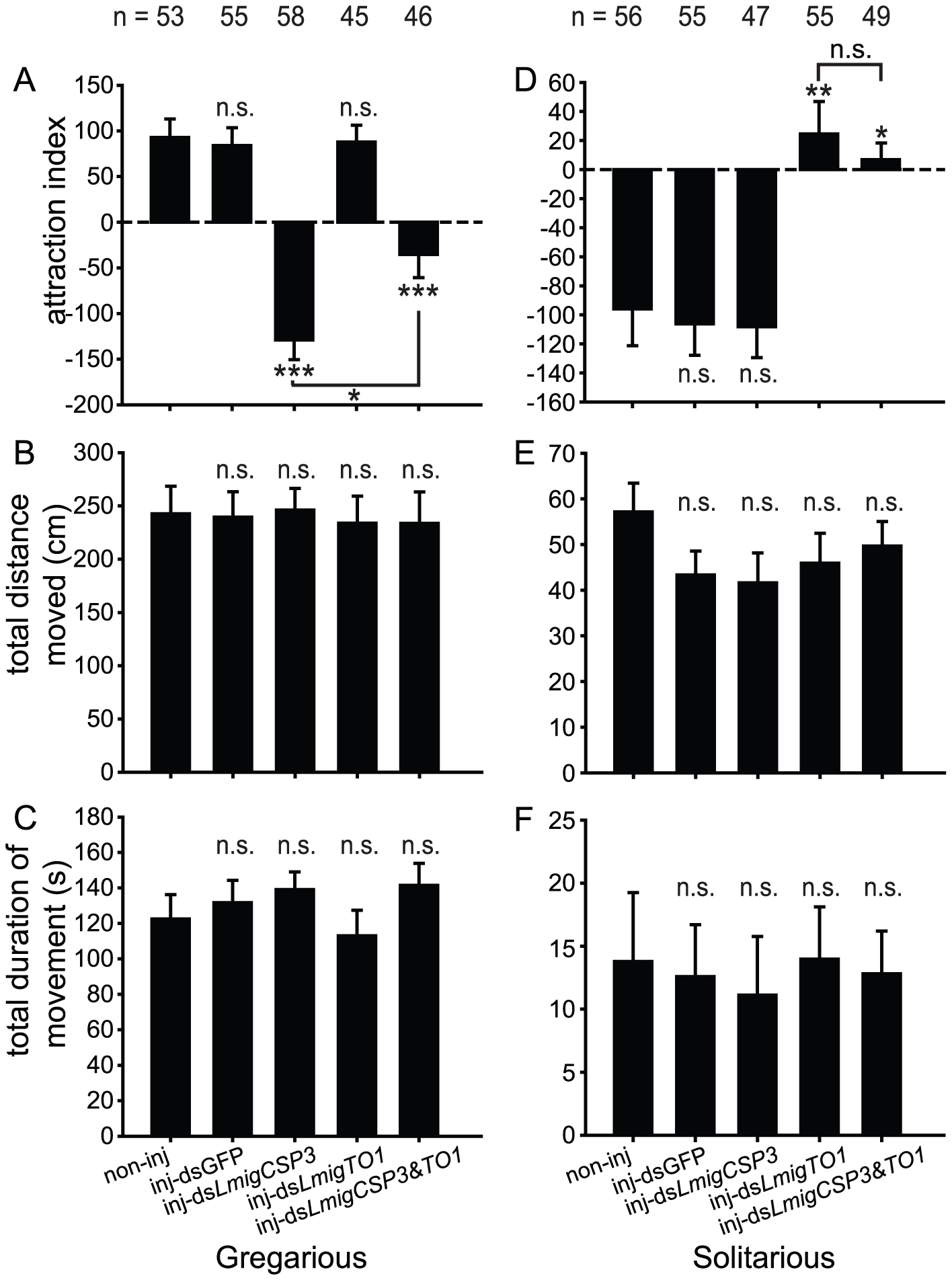 Behavioral phenotype of locust nymphs in arena after RNAi knockdown of <i>LmigCSP3/LmigTO1</i>.