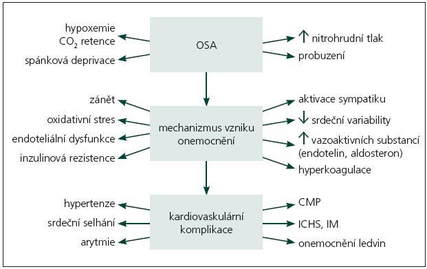 Schéma 1. Obstrukční spánková apnoe, patofyziologie a kardiovaskulární komplikace [5]. OSA: obstrukční spánková apnoe, CO<sub>2</sub>: oxid uhličitý, CMP: cévní mozková příhoda, ICHS: ischemická choroba srdeční, IM: infarkt myokardu