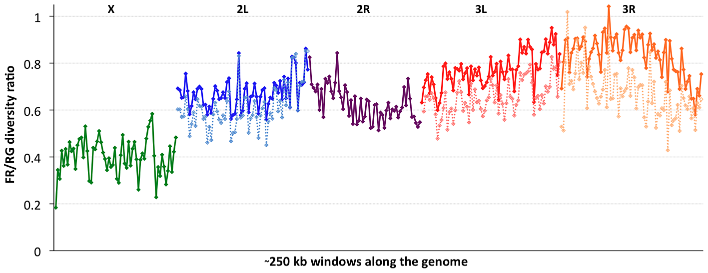 The ratio of nucleotide diversity between non-African (France, FR) and African (Rwanda, RG) genomes.