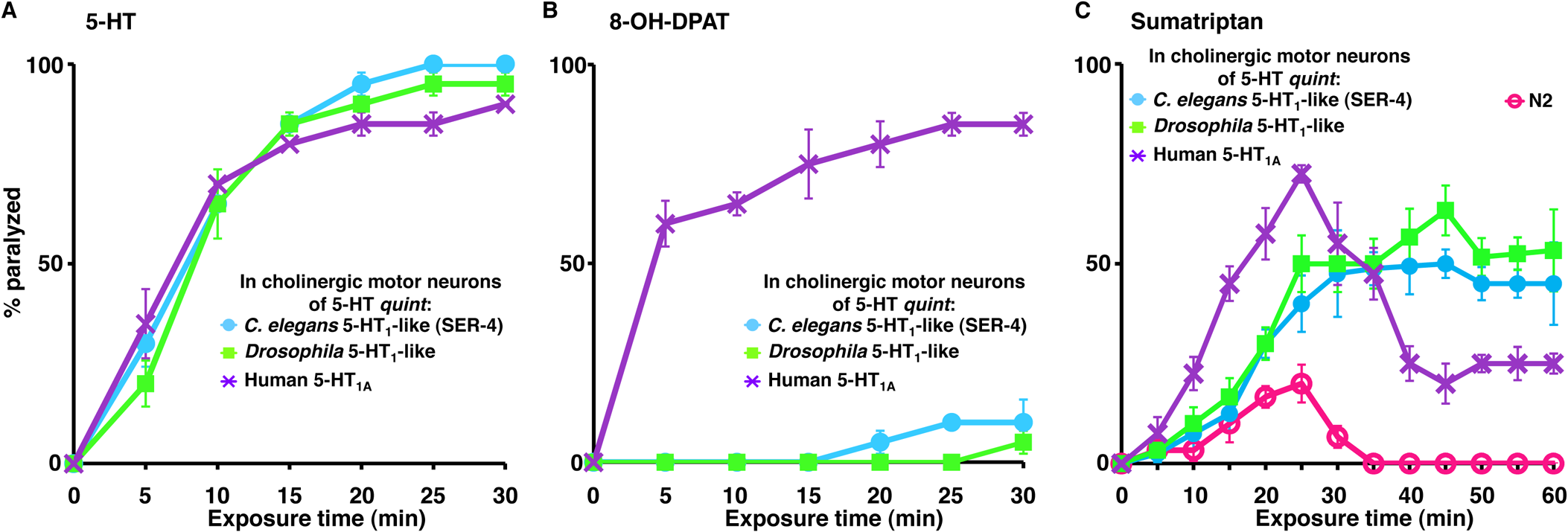 5-HT and 5-HT receptor agonists selectively paralyze <i>C</i>. <i>elegans</i> 5-HT receptor mutant animals expressing nematode, insect or human 5-HT<sub>1</sub>-like receptors in the cholinergic motor neurons.