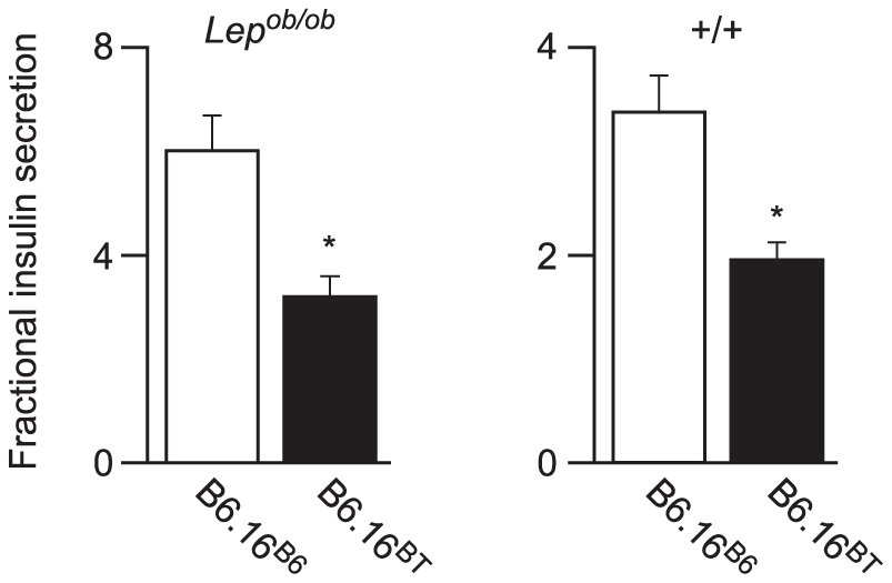 Effect of substitution of BTBR chromosome 16 in the B6 <i>Lep<sup>ob/ob</sup></i> mice on insulin secretion.