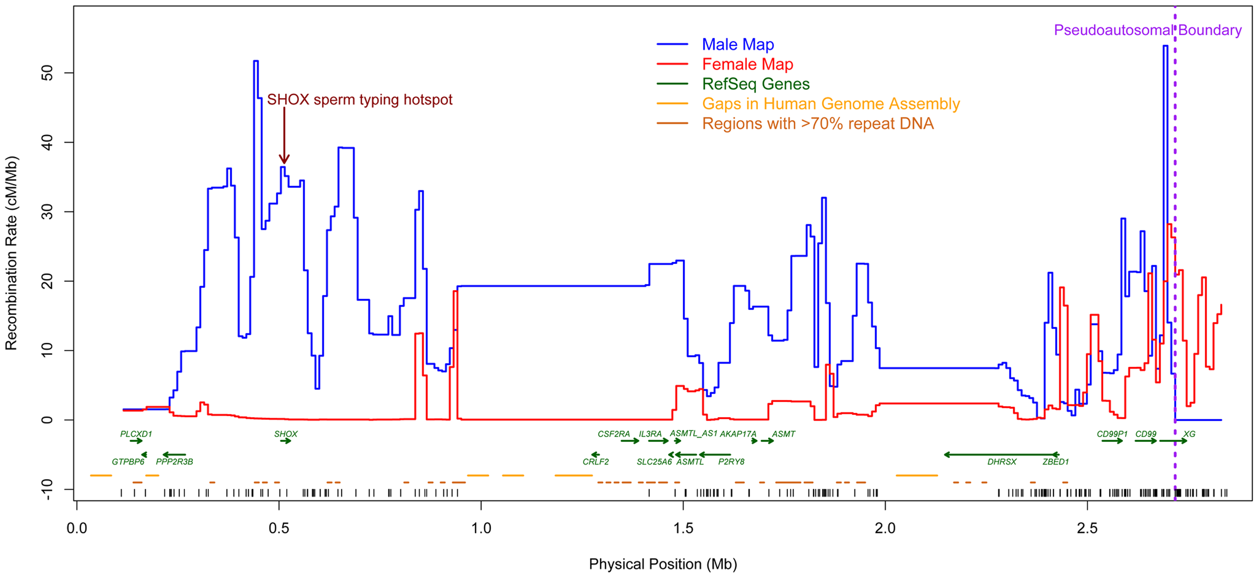 New sex-specific pedigree-based genetic maps (10 kb scale).