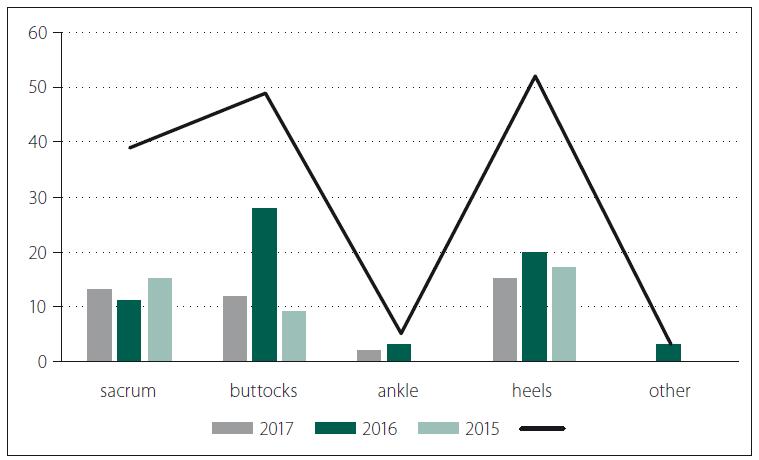 Location of pressure ulcers in hospitalized patients in 2015–2017.<br> Obr. 6. Lokalizace dekubitů u hospitalizovaných nemocných v letech 2016–2017.