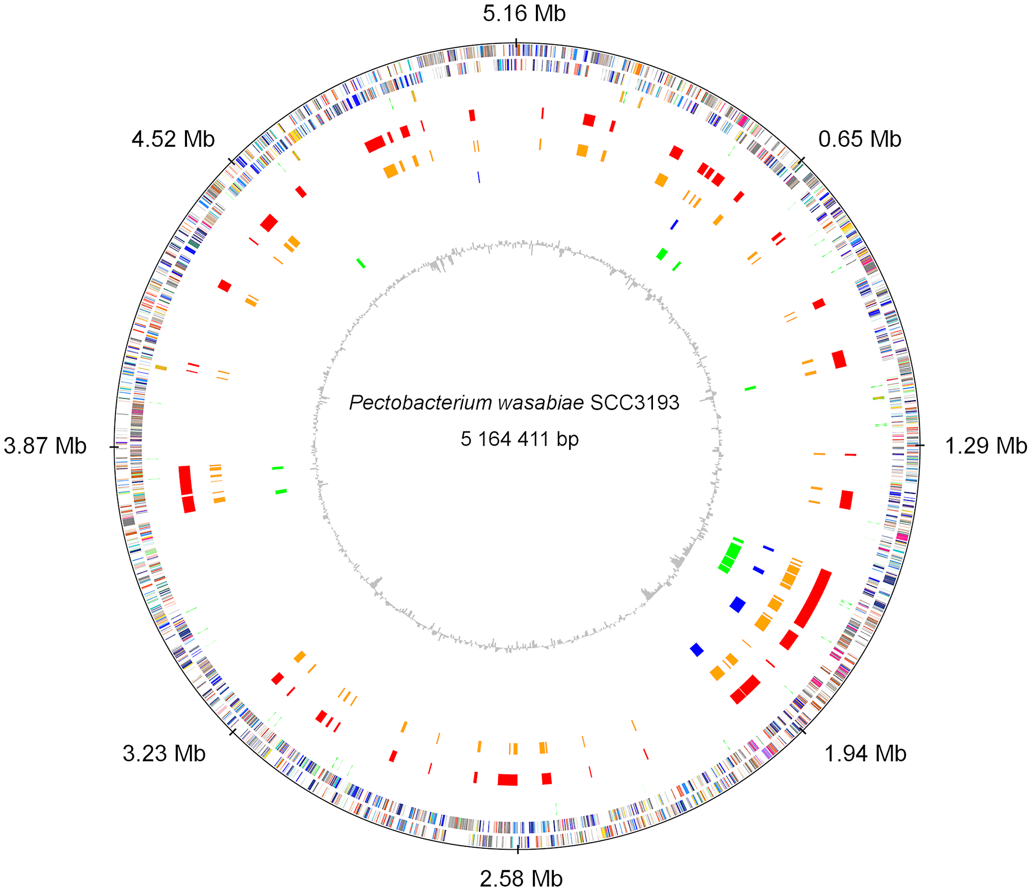 Circular representation of the chromosome of <i>Pectobacterium wasabiae</i> SCC3193.