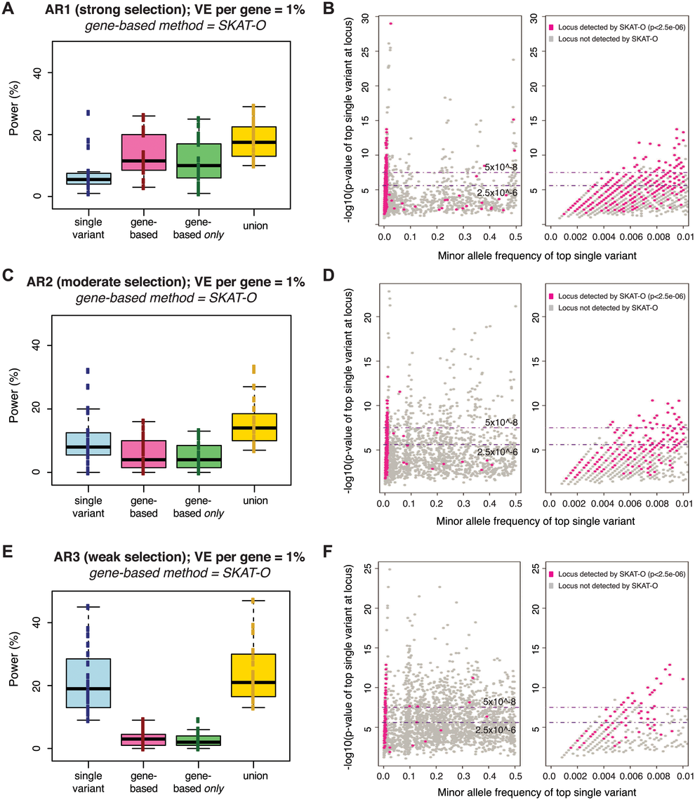 Power of best-performing gene-based rare variant method as compared to single variant association.