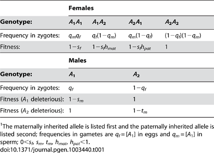 Fitnesses and frequencies of genotypes at the <i>A</i> locus.<em class=&quot;ref&quot;>1</em>