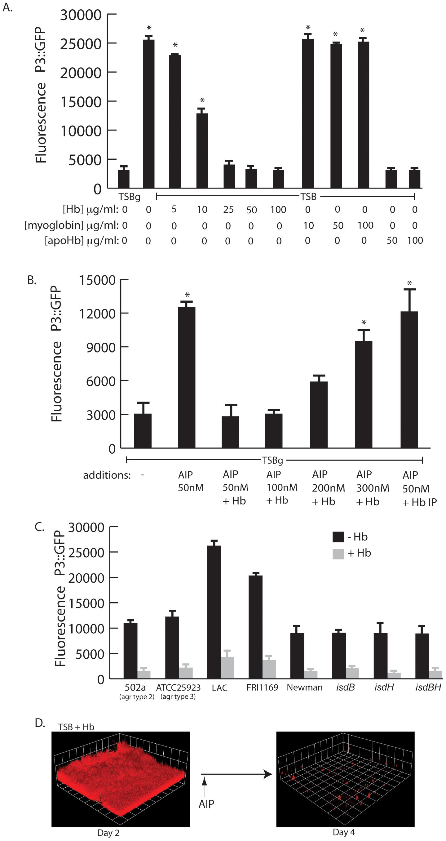 <i>agr</i> activity in the presence of hemoglobin.