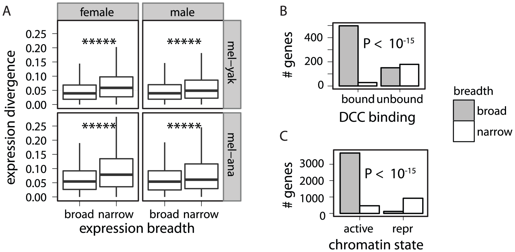 Association between expression breadth, DCC binding, chromatin state, and expression divergence.