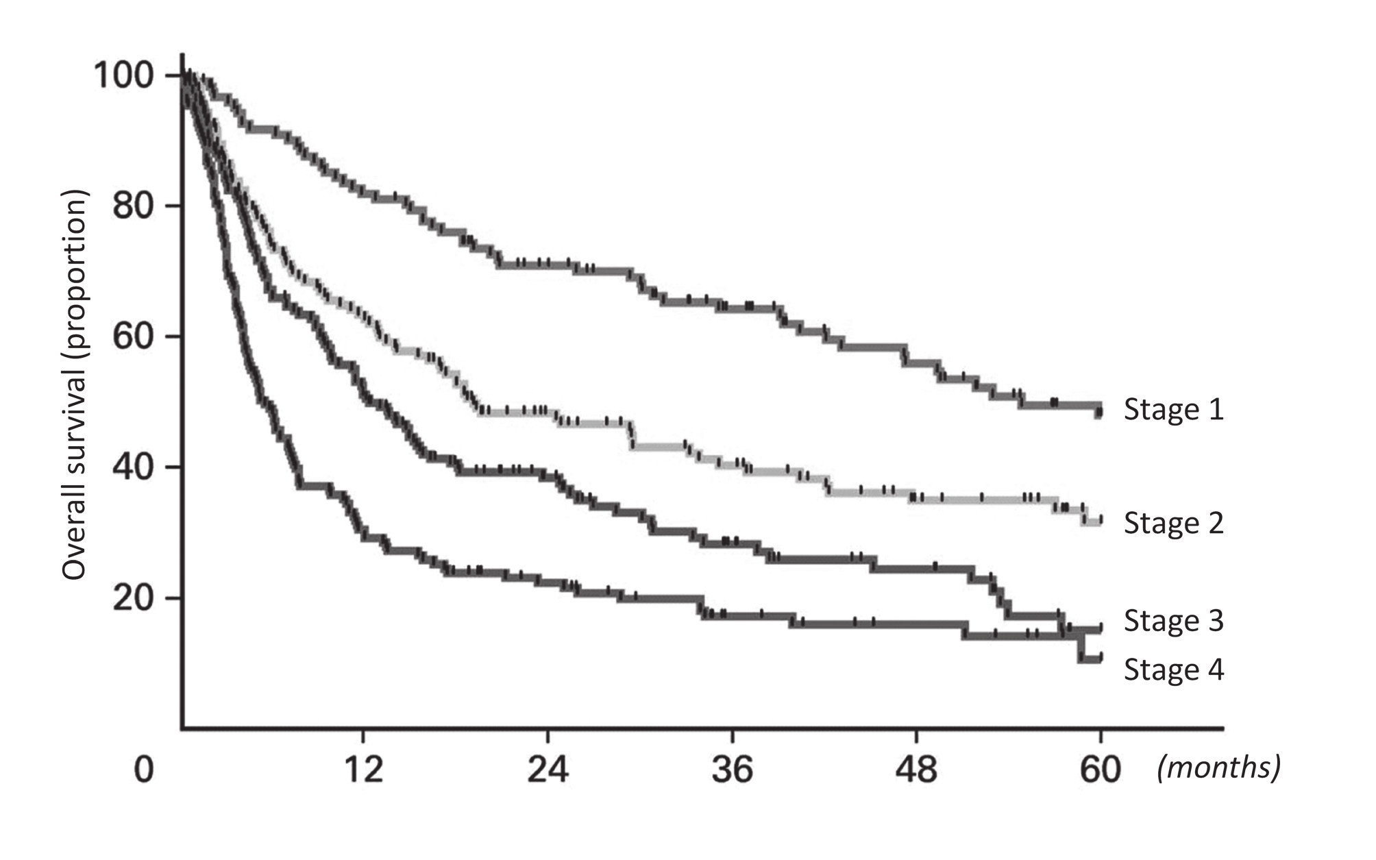 Fig. 2 Kaplan-Meier curves fo overall survival from diagnosis among the subgroup of 583 patients based on the revised Prognostic Mayo Clinic staging systém for systemic AL amyloidosis (30)
