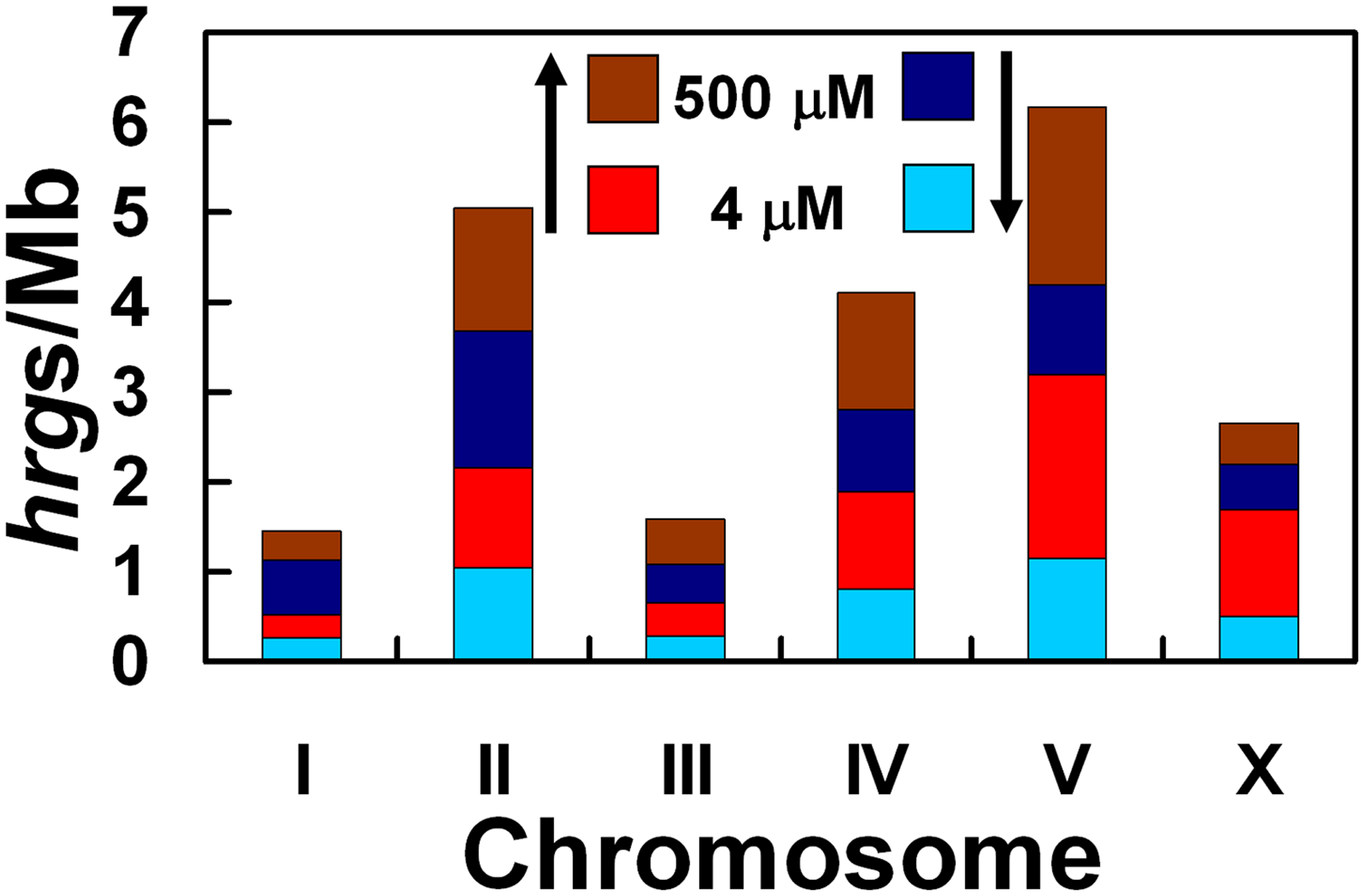 Depiction of the number of <i>hrgs</i> found on each chromosome relative to the number of megabases in that chromosome.