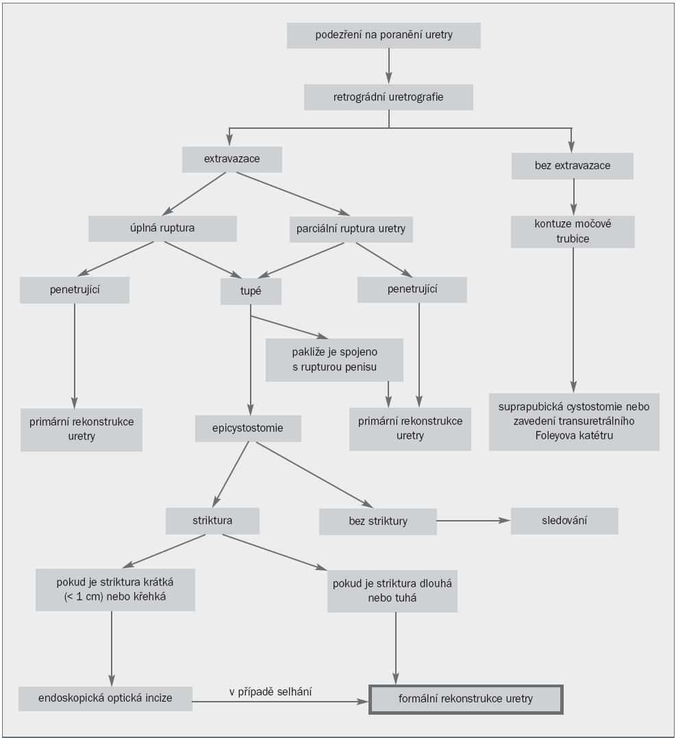 Řešení poranění přední uretry u mužů.