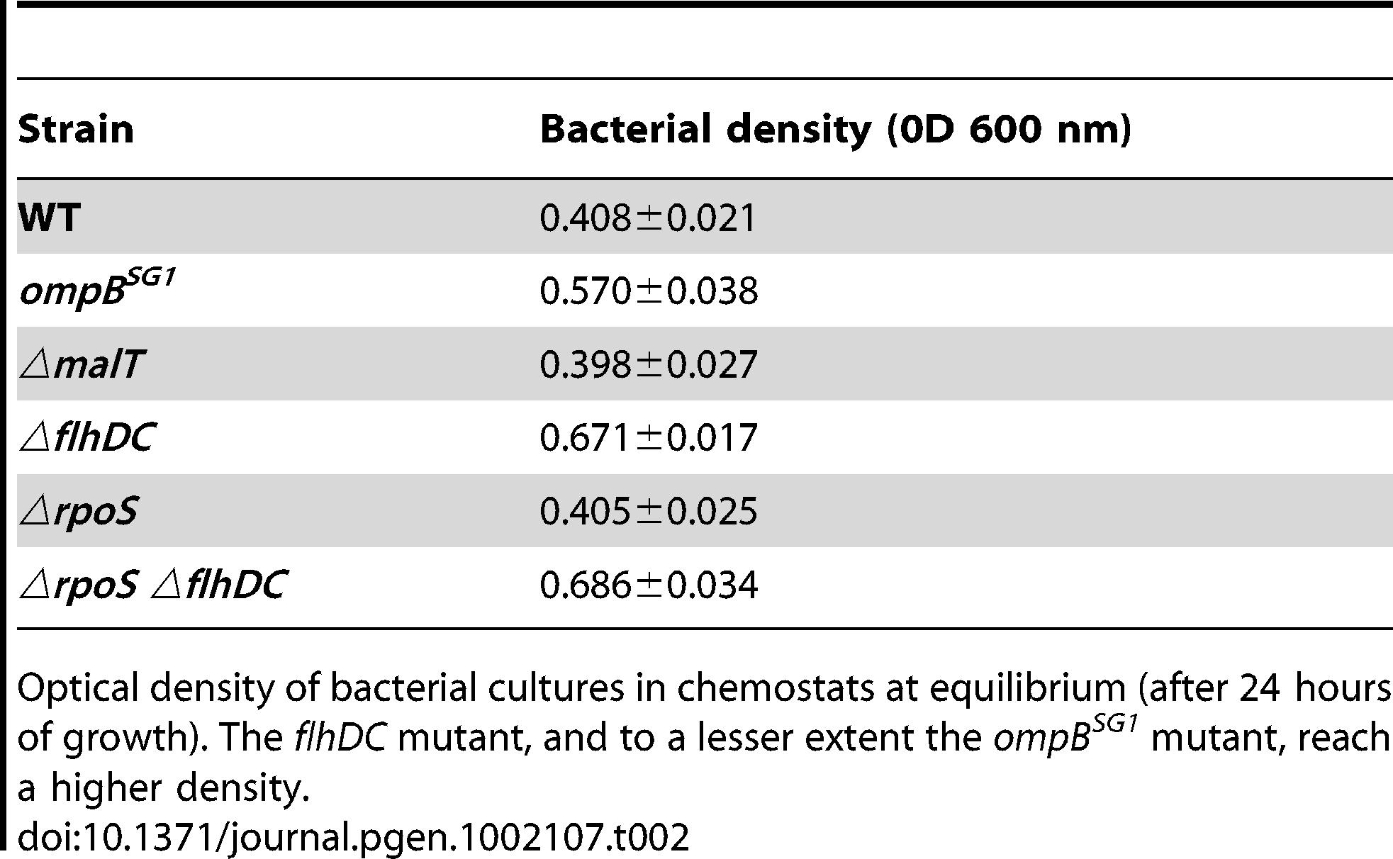 Bacterial density in chemostats.