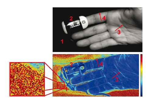 Fig. 6: Representative image of calculated R-values in the background and foreground of a PPGI sequence with visible noise artifacts in the background (1); reflection artifacts on the reference pulse oximeter (2); and motion artifacts at high-contrast image corners (3 & 4) [10].