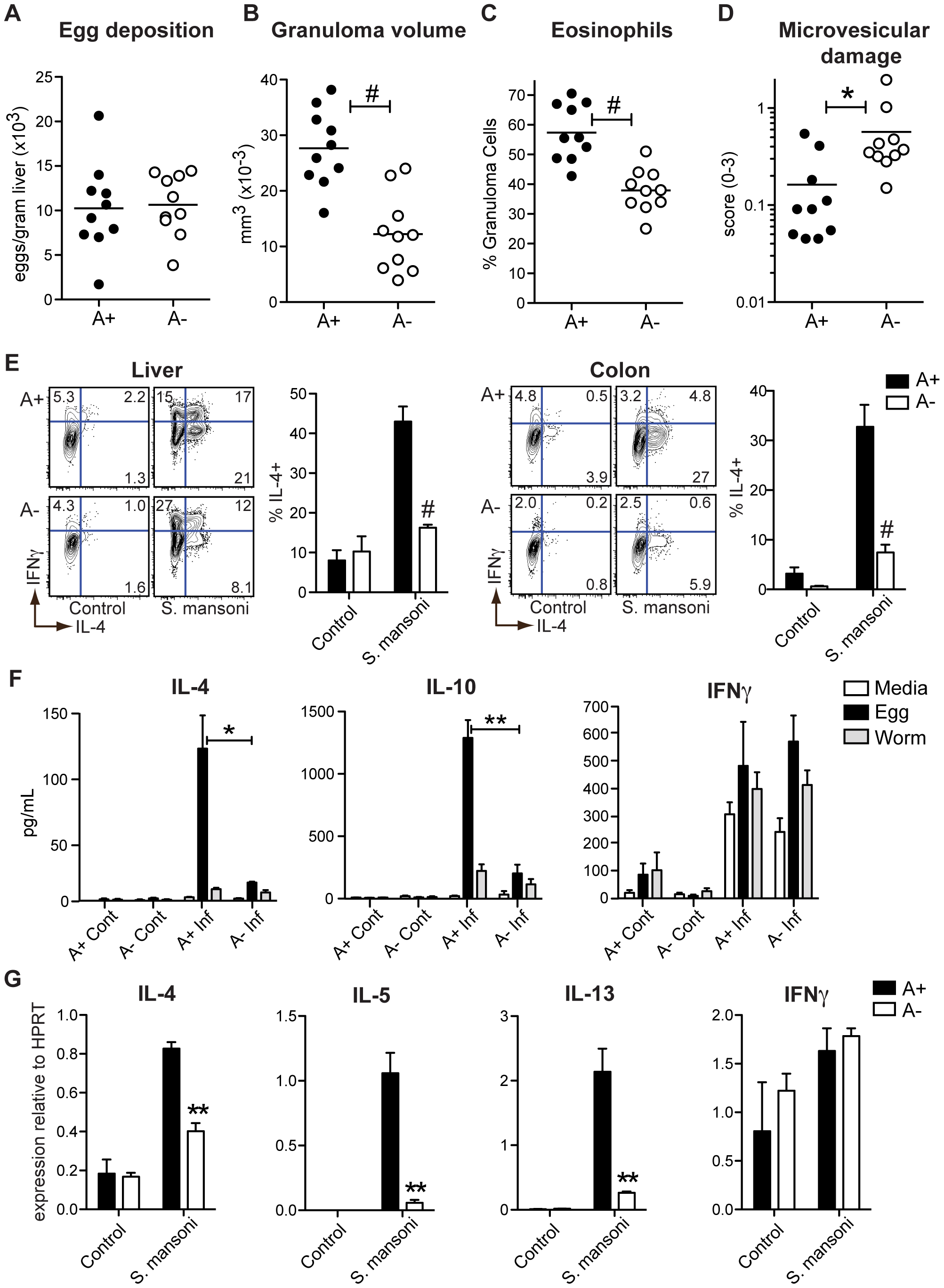 Vitamin A deficiency impairs <i>S. mansoni</i>-elicited Th2 responses.