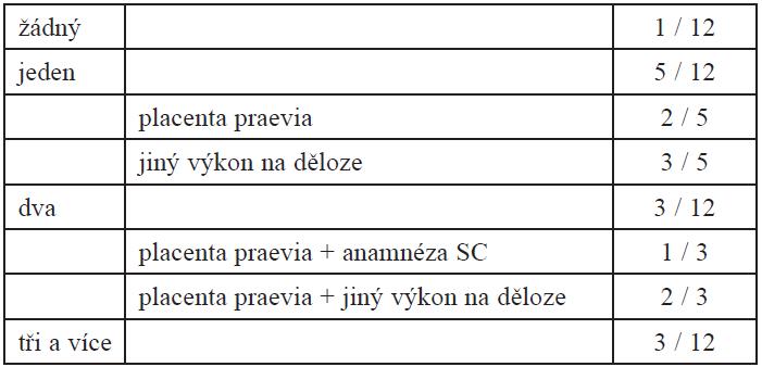 Rizikové faktory v souboru (n=12)