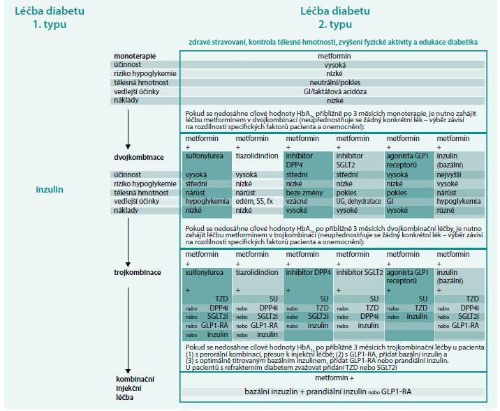 Schéma 2. Léčba diabetu 1. a 2. typu.