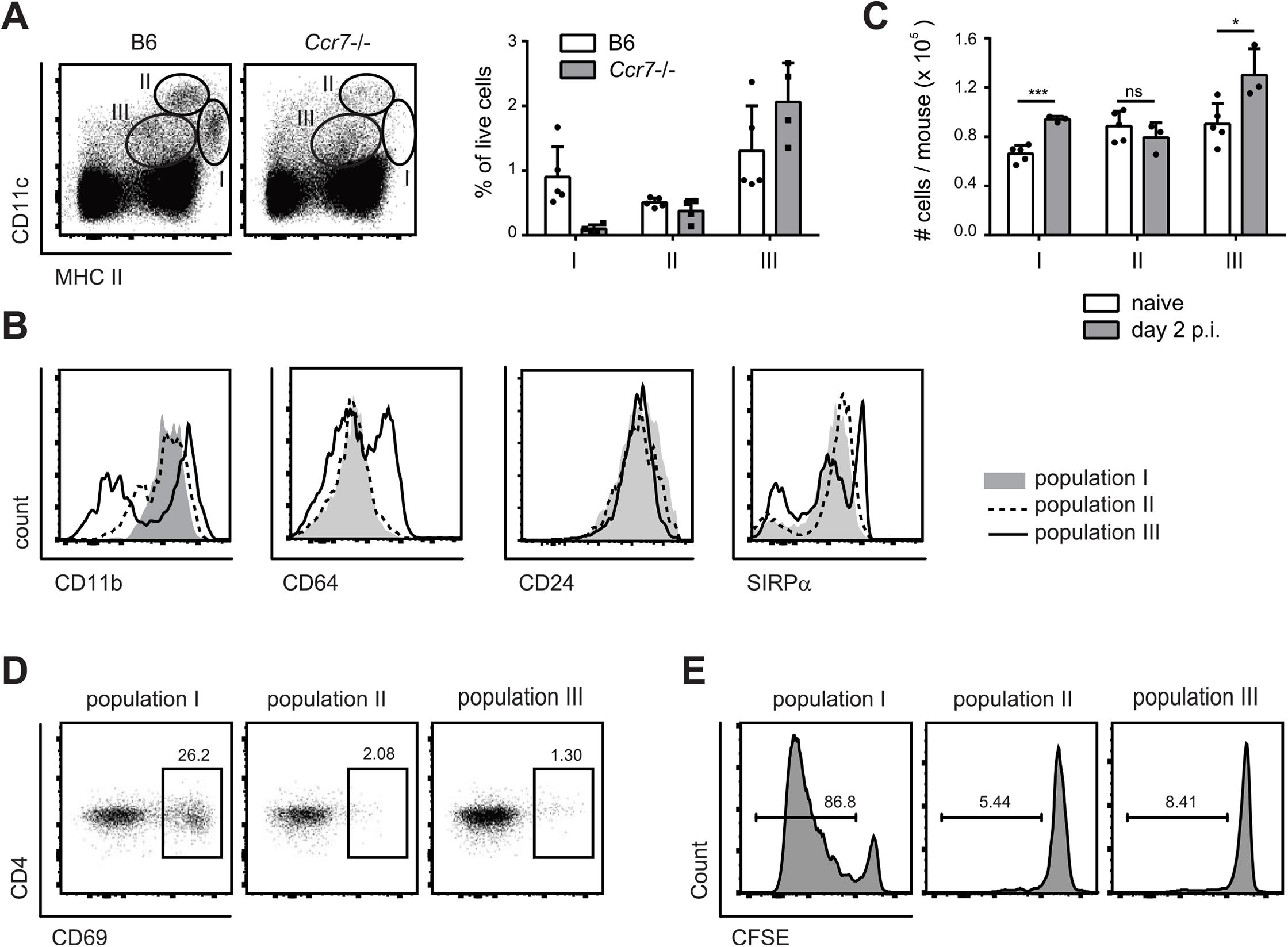 MHC II<sup>hi</sup> CD11c<sup>+</sup> migratory DCs present <i>C</i>. <i>albicans</i>-derived antigen in the cervical lymph nodes.