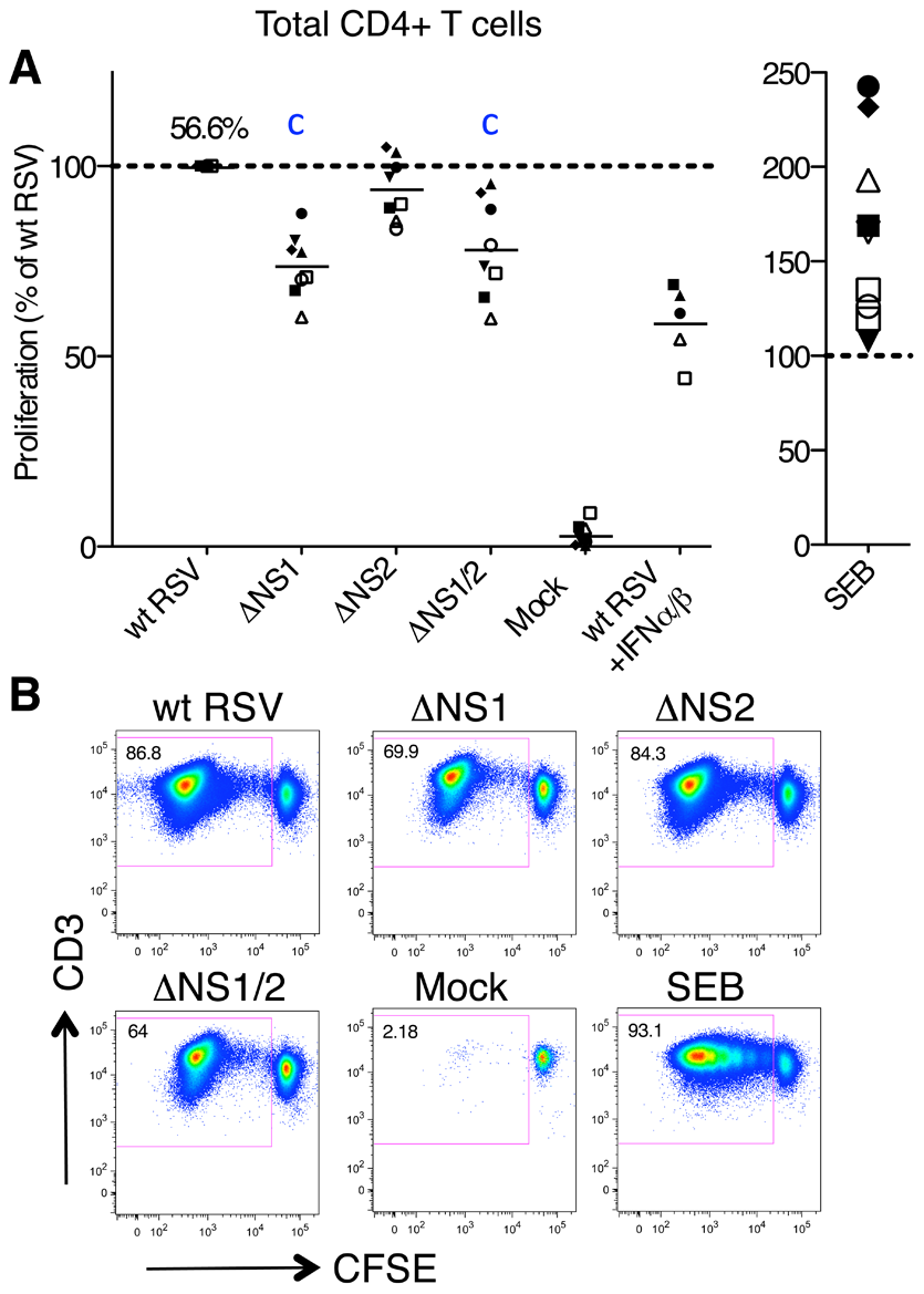 Proliferation of CD4+ T cells during co-cultivation with autologous DC pre-infected with wt RSV or its NS1/2 deletion mutants.