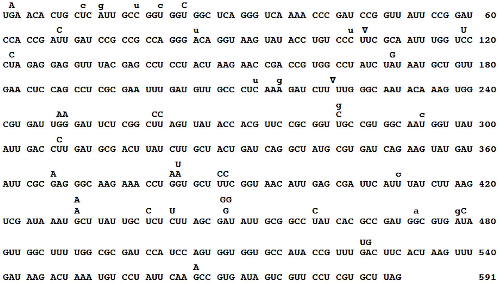 Spectrum of spontaneous Qß mutations.