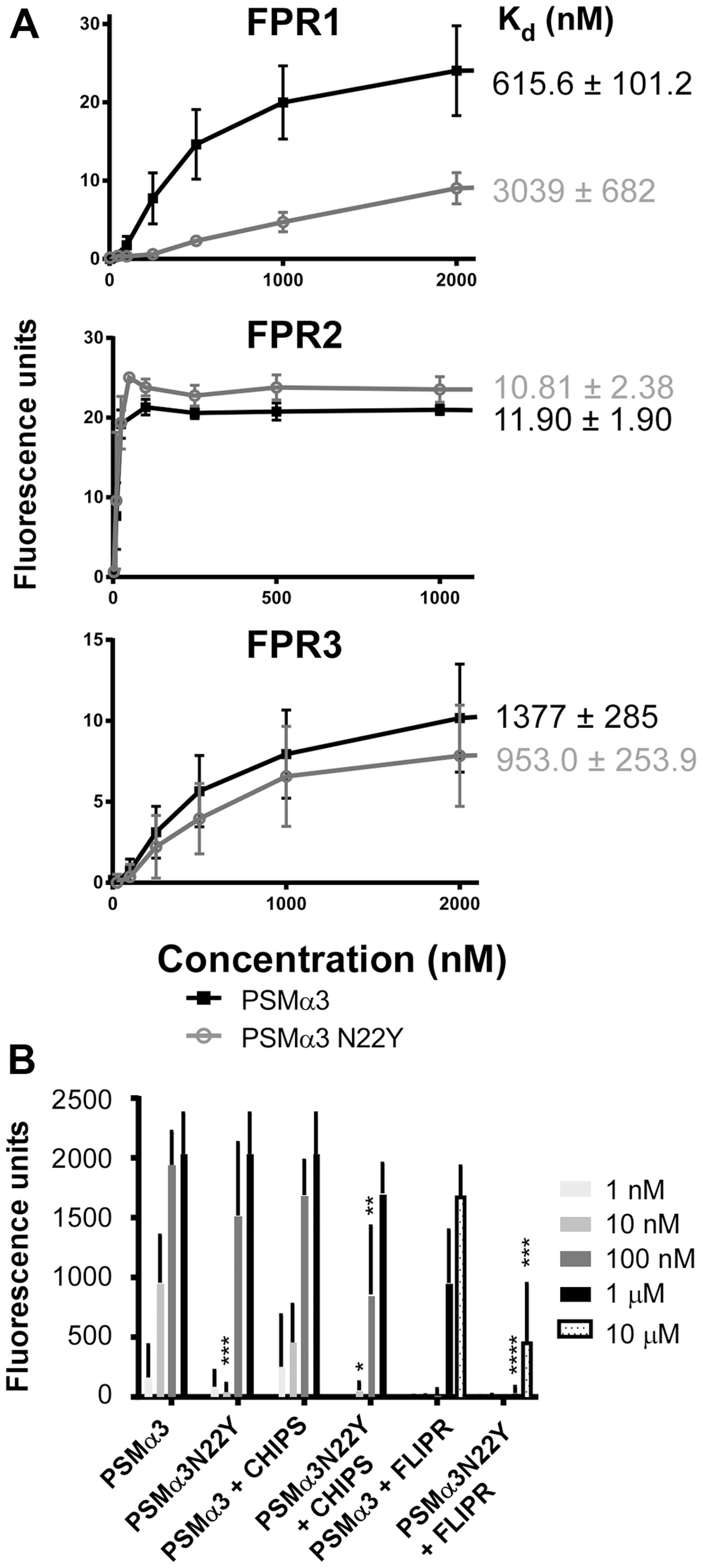 PSMα3N22Y shows decreased activation of FPR1.