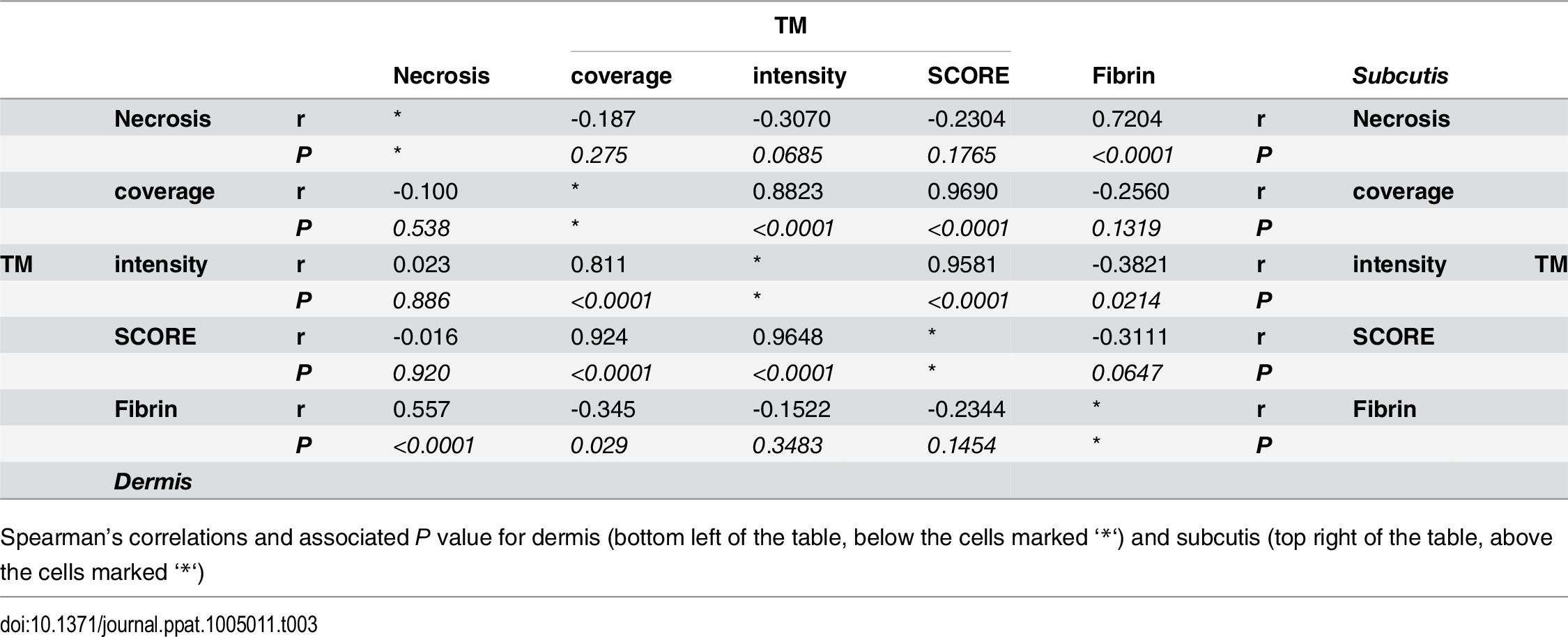 Spearman's correlation of histopathology/immunohistochemistry scoring.