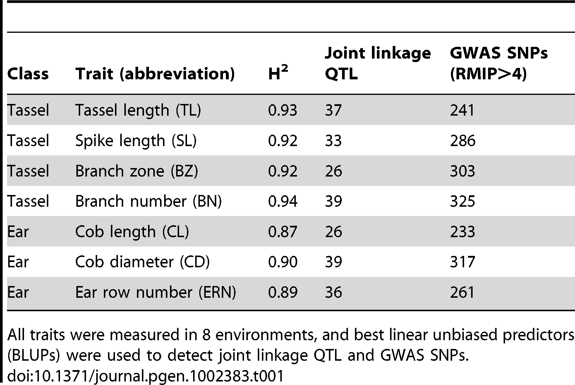 Summary of maize inflorescence phenotypes and QTL results.