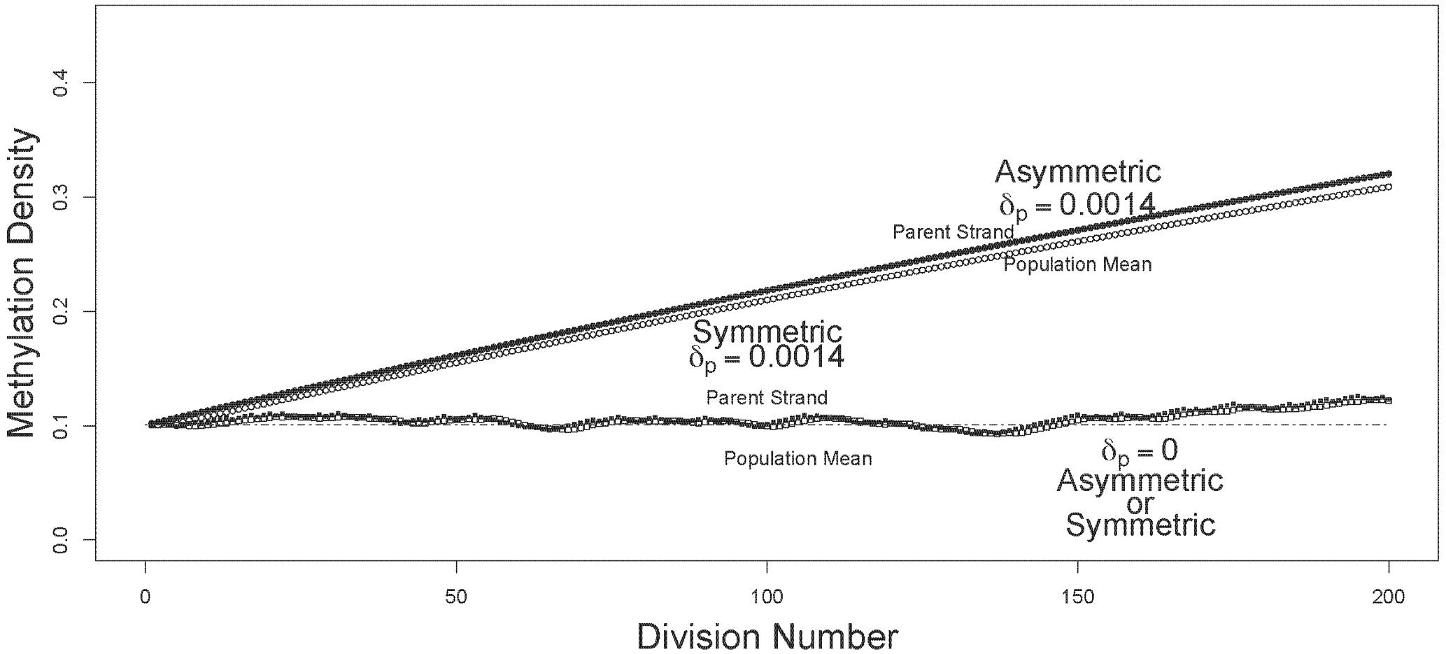Trajectories of methylation densities under asymmetric or symmetric strand segregation, with low initial methylation density.