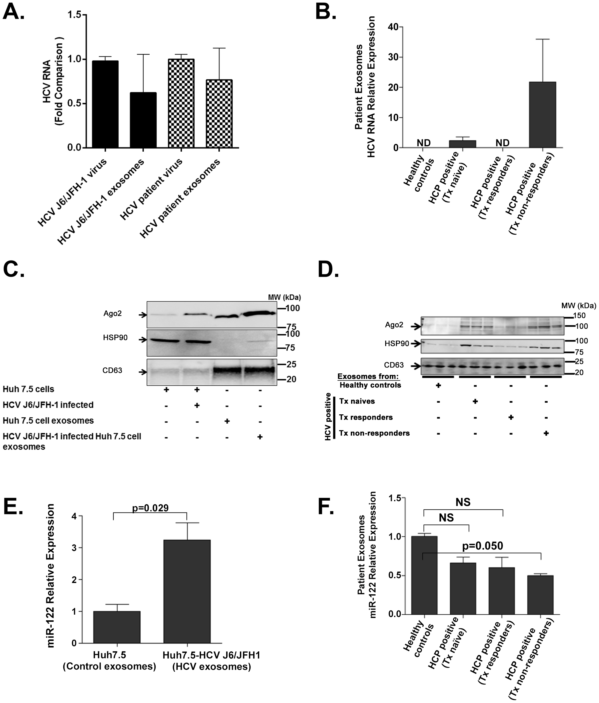 Exosomes from HCV J6/JFH-1 infected Huh7.5 cells and sera of HCV infected patients contain HCV RNA, miR-122, Ago2, and HSP90.