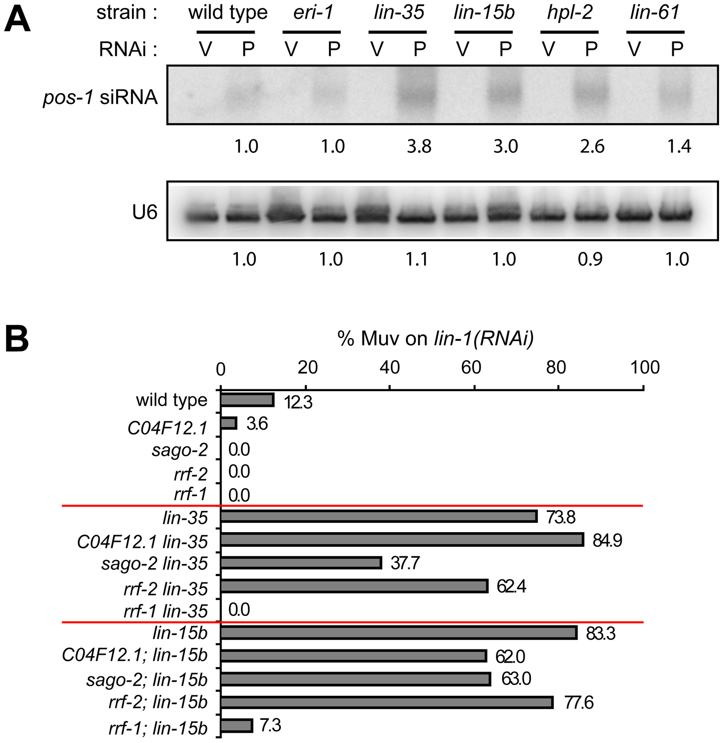 Transcriptional misregulations partially contribute to the enhanced RNAi response of synMuv B mutants.