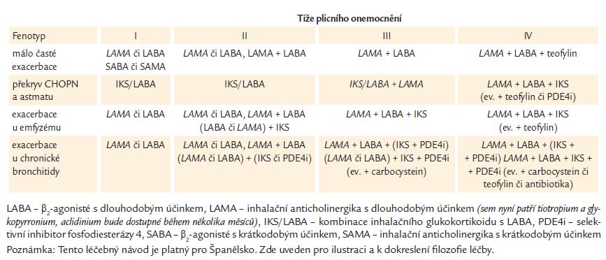 Španělský doporučený postup léčby CHOPN – zjednodušená verze [4]