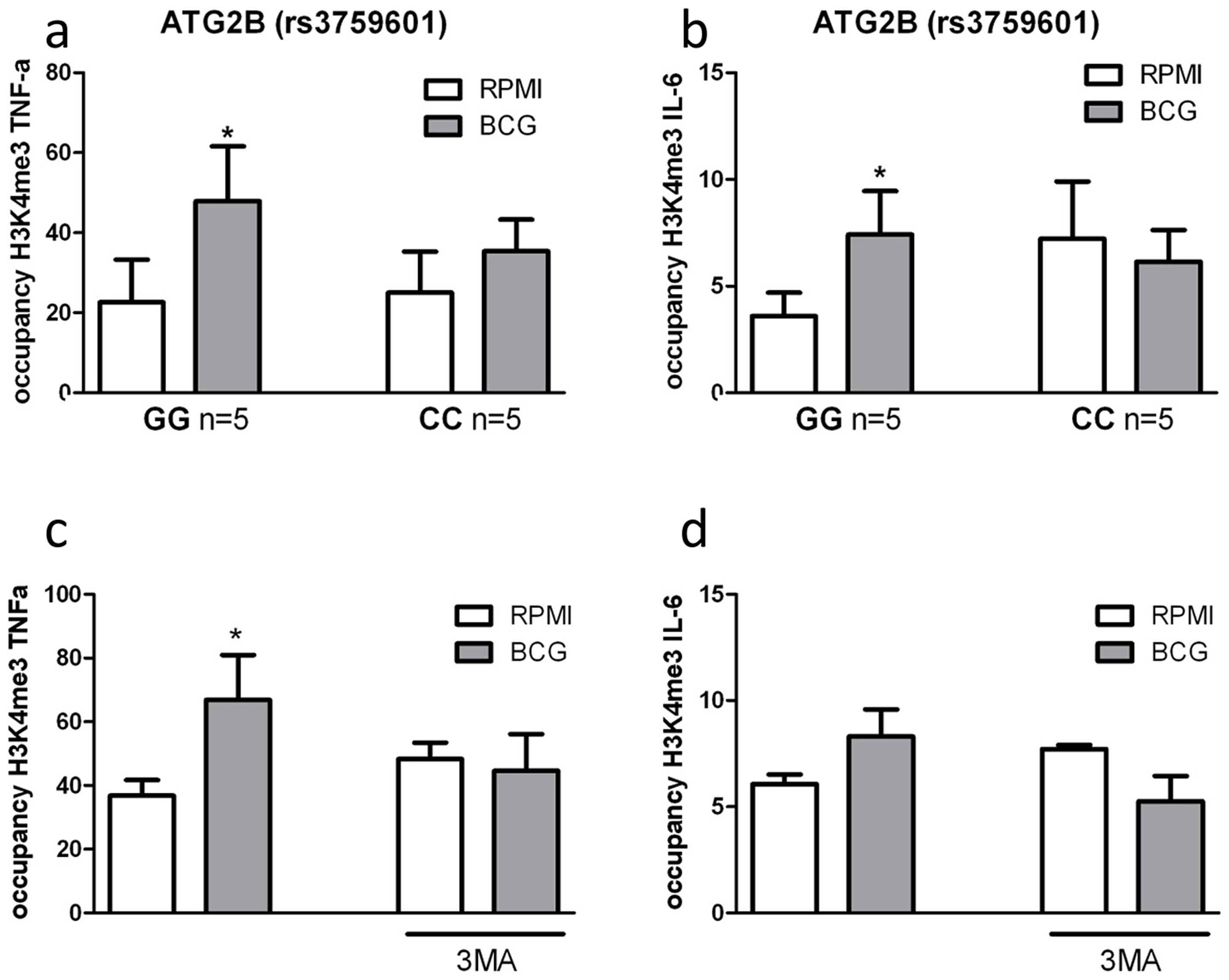 Impairment of autophagy decreases trimethylation at H3K4 in human monocytes.