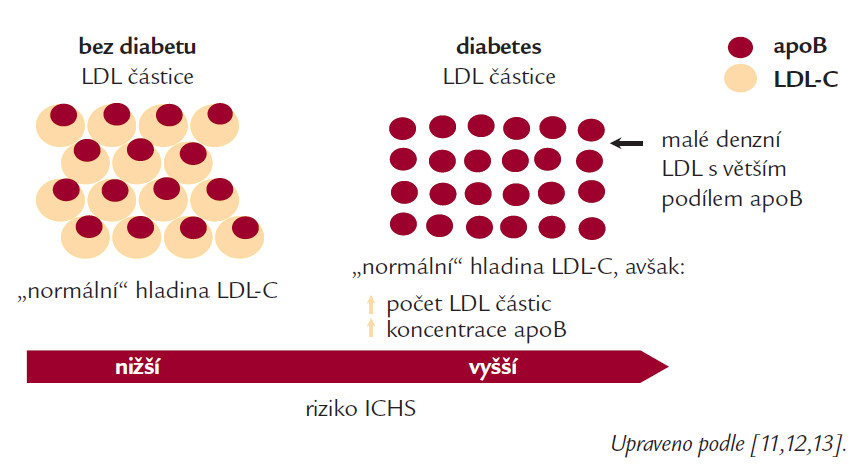 """Schéma 1. """"Normální"""" hladiny LDL-C u DM mohou být zavádějící...  Malé denzní částice LDL-C vykazují vyšší aterogenicitu."""