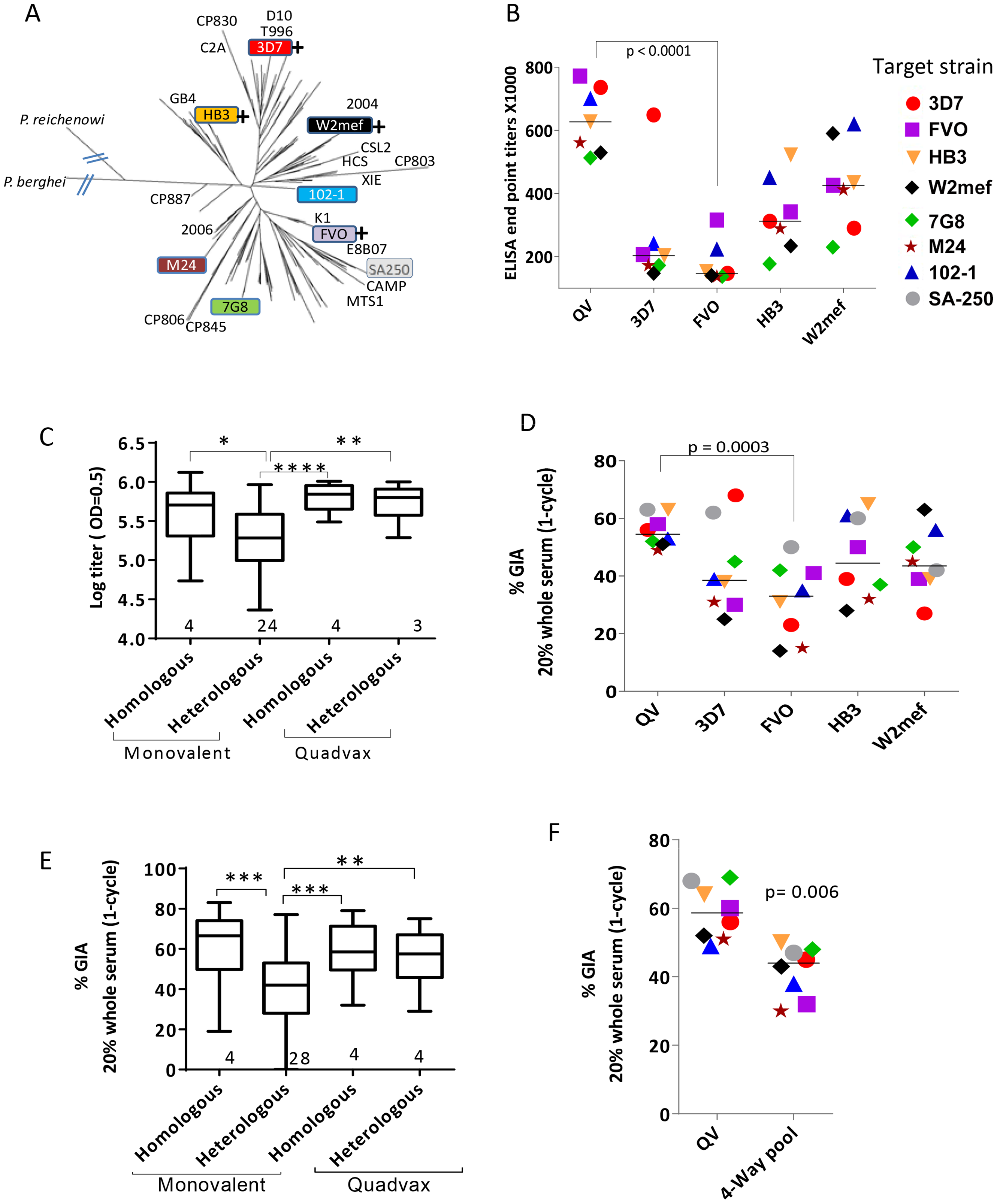 AMA1 sequence diversity and allelic coverage of four monovalent vaccines as compared to the QV.