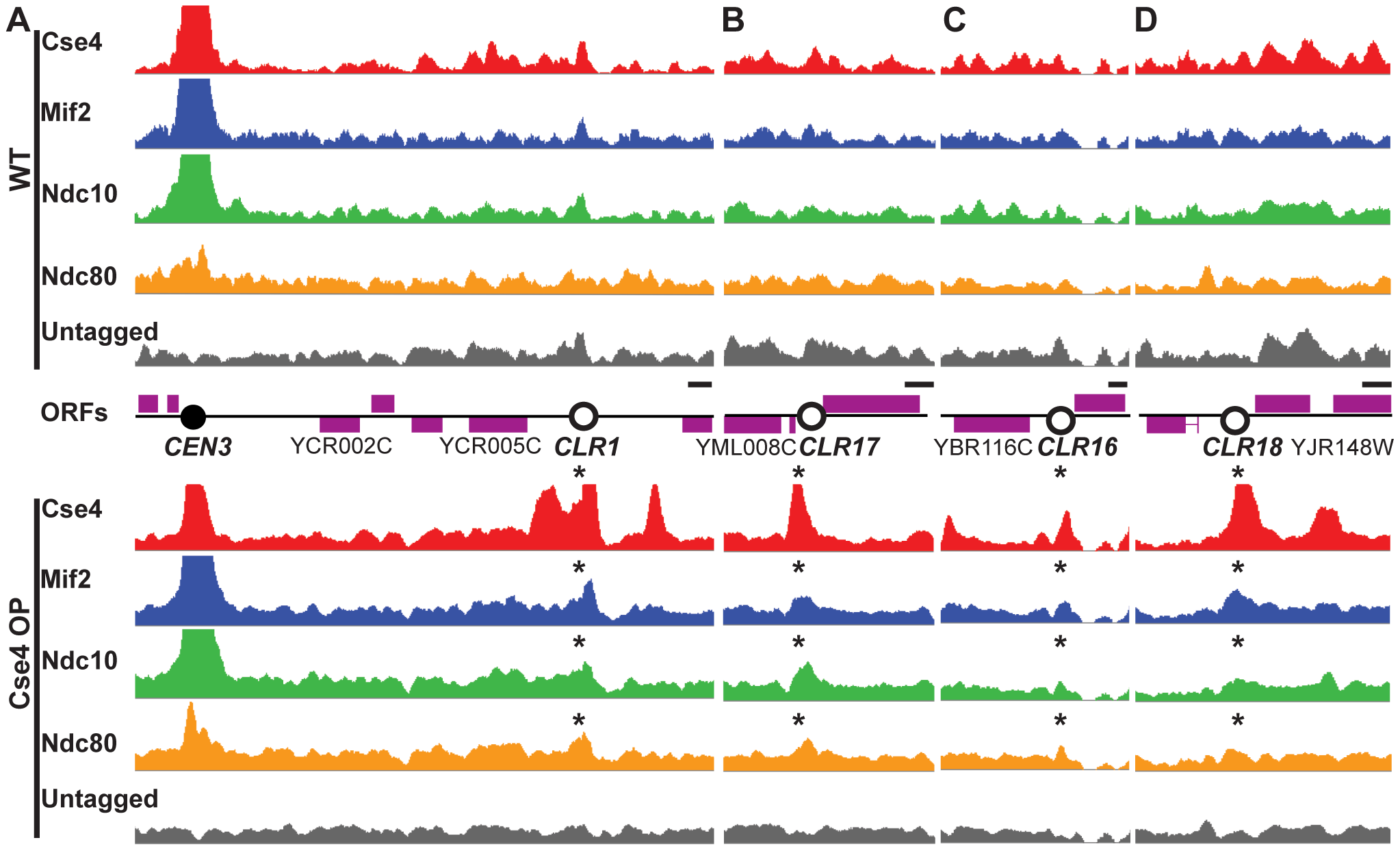 Formation of Centromere-Like Regions revealed by ChIP–Seq.