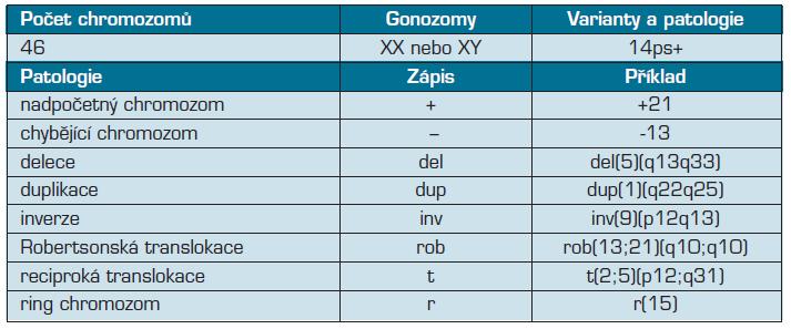 Základní schéma zápisu cytogenetického nálezu