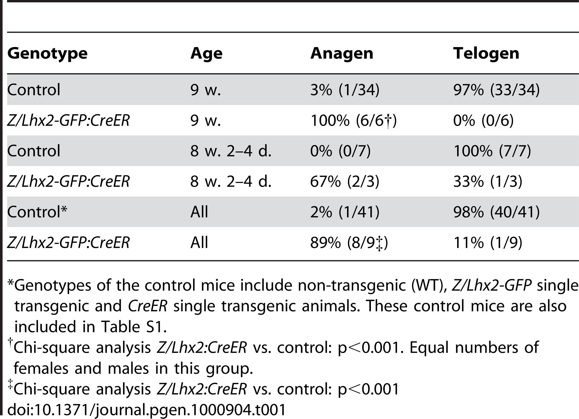 Lhx2 expression induce anagen.