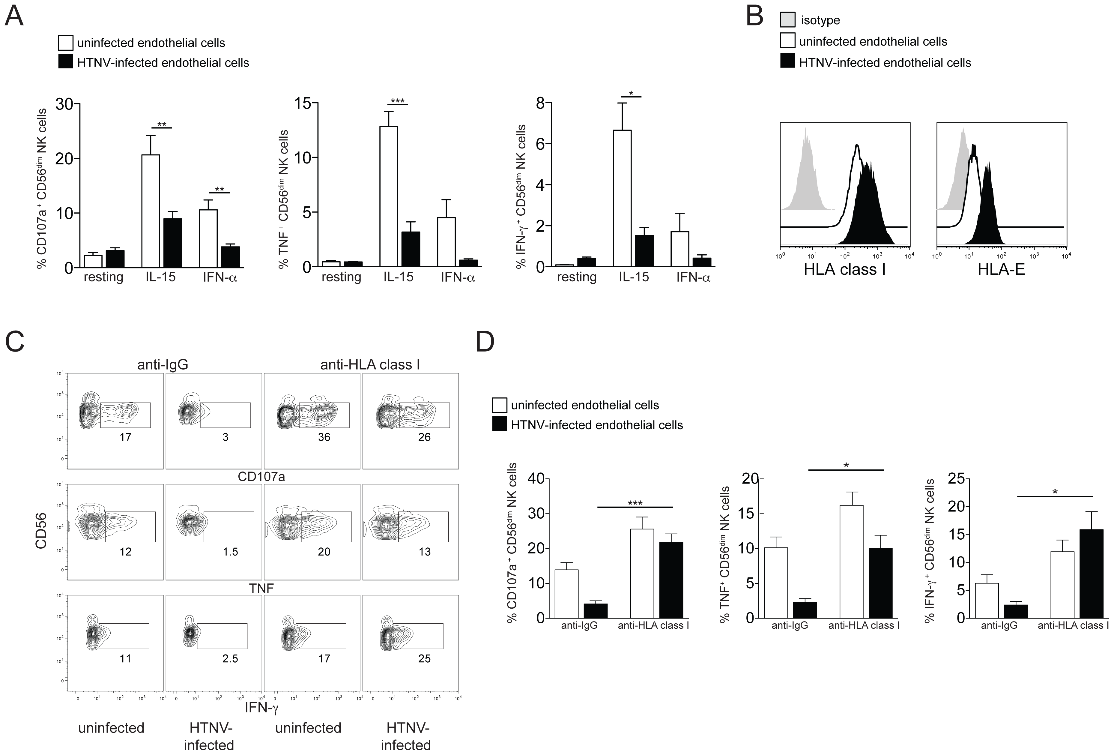 Increased HLA class I expression on hantavirus-infected cells inhibits NK cell effector functions.