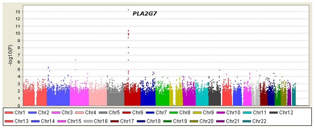 Manhattan plot of genome-wide P values for association with Lp-PLA<sub>2</sub> mass.
