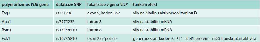 Přehled nejčastěji studovaných polymorfizmů genu VDR; upraveno podle [20]