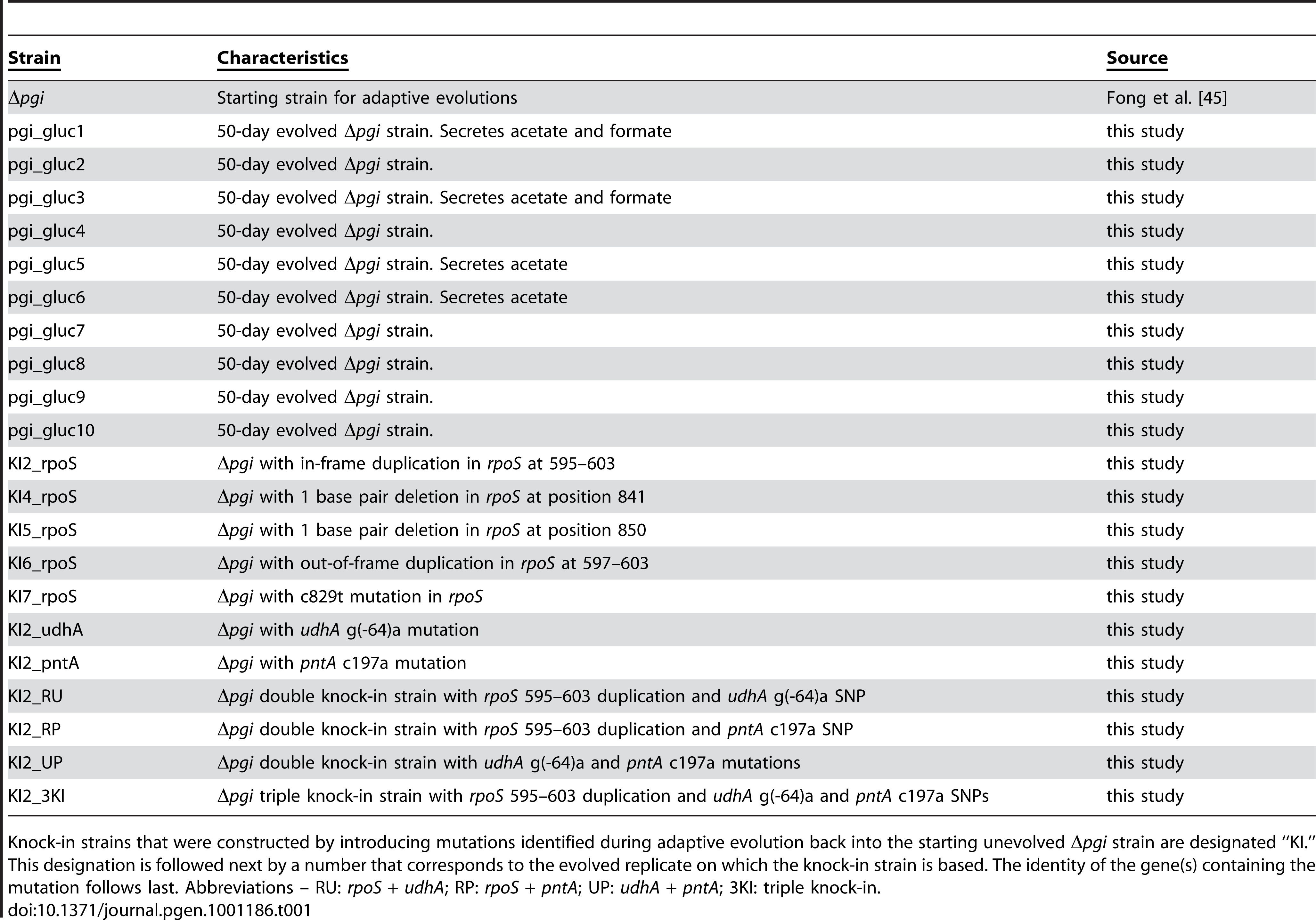 Strains used in this study.