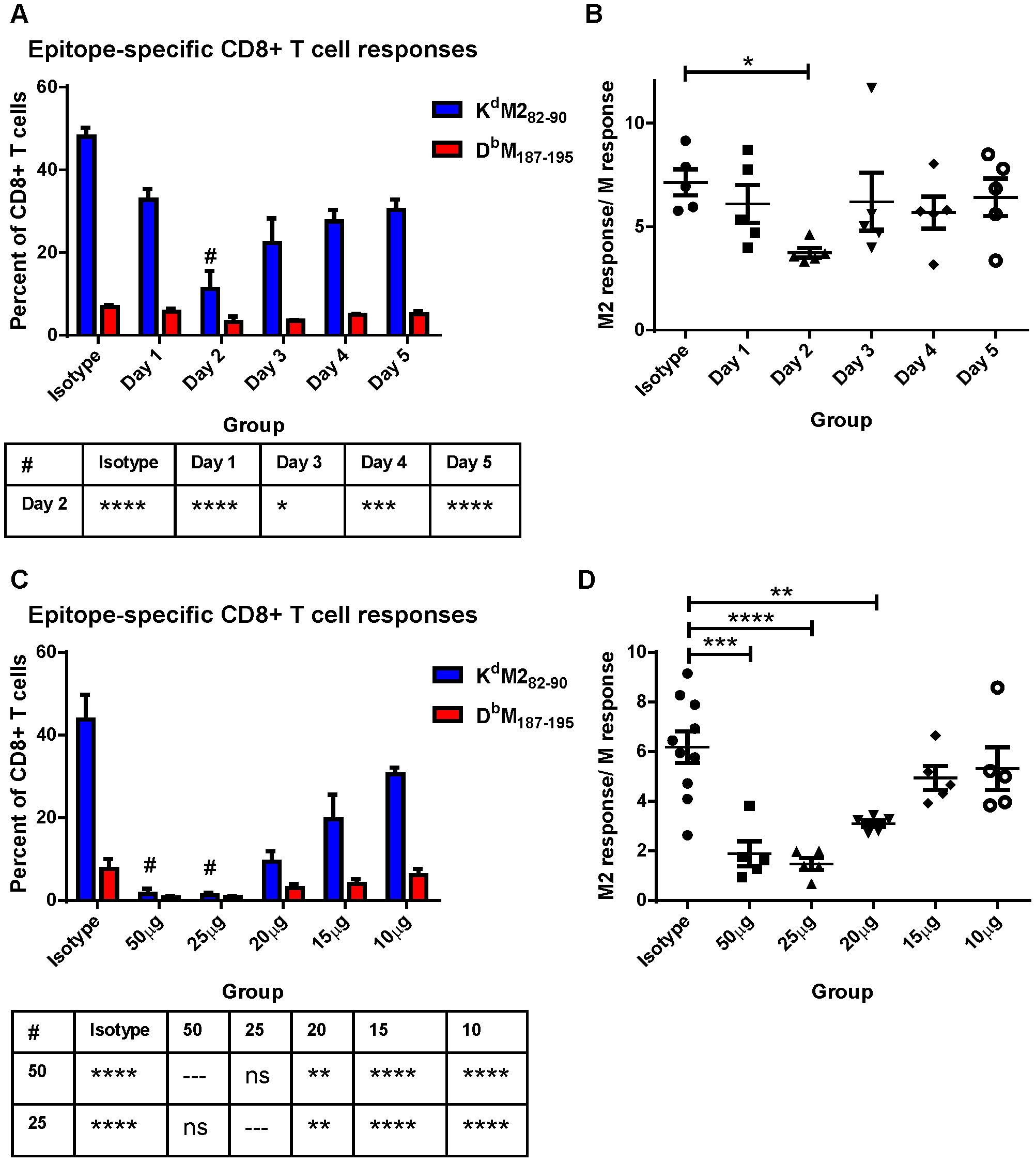 Modulating CD28-mediated costimulatory signals differentially affects K<sup>d</sup>M2<sub>82–90</sub> and D<sup>b</sup>M<sub>187–195</sub>-specific responses.