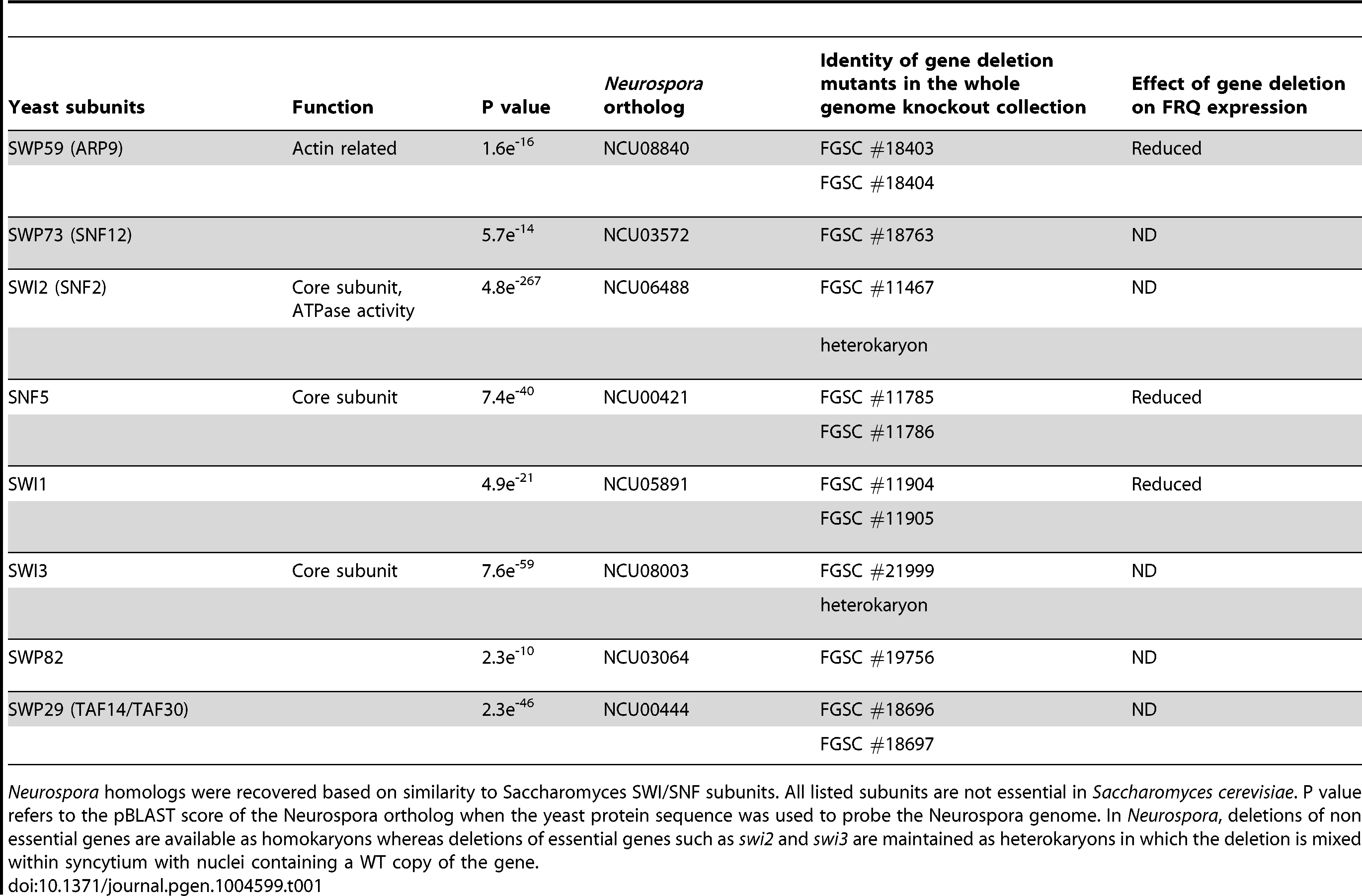 <i>Neurospora</i> SWI/SNF subunits and knockouts.