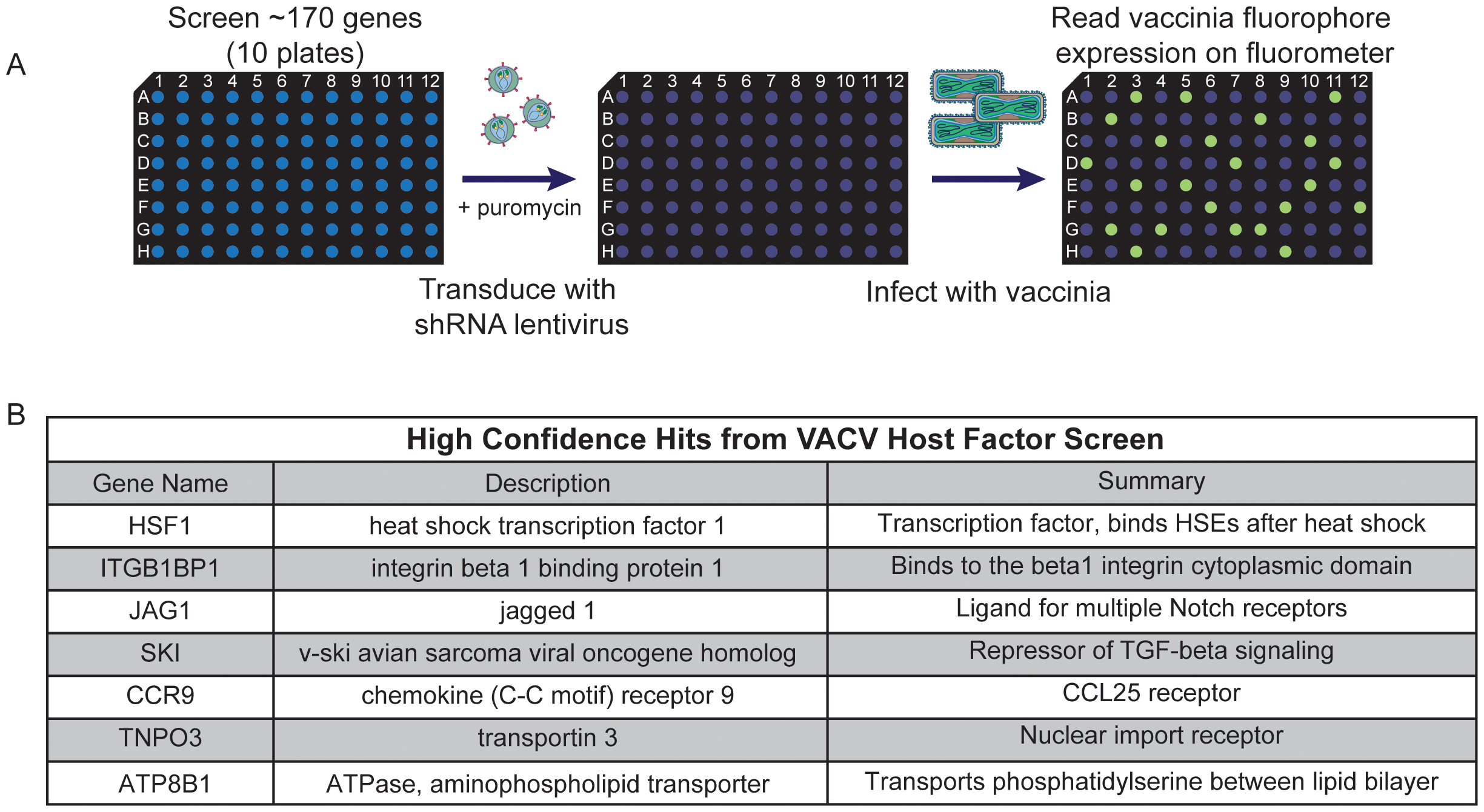 High confidence hits identified in secondary screen.
