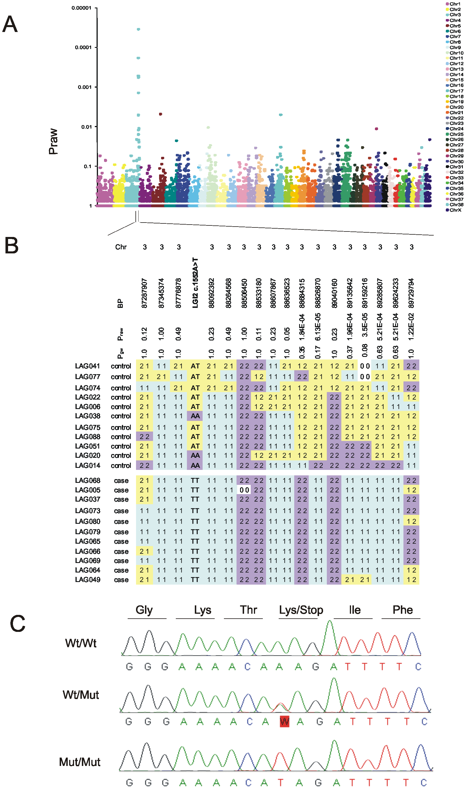 Mapping and identification of the benign focal juvenile epilepsy mutation in <i>Lagotto Romagnolo</i>.
