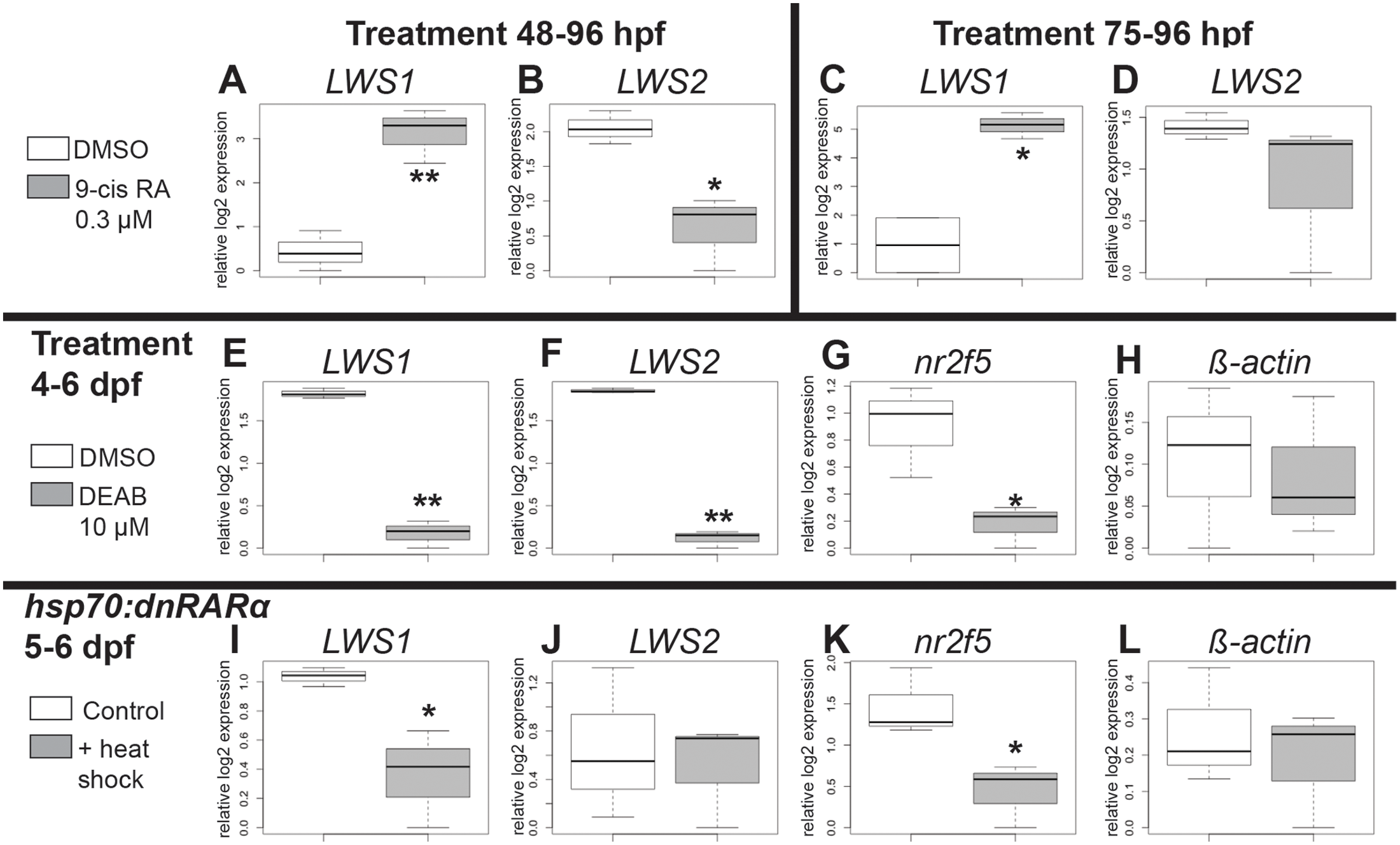 Quantitative PCR for gene expression after retinoid treatment and reduction of RA signaling.