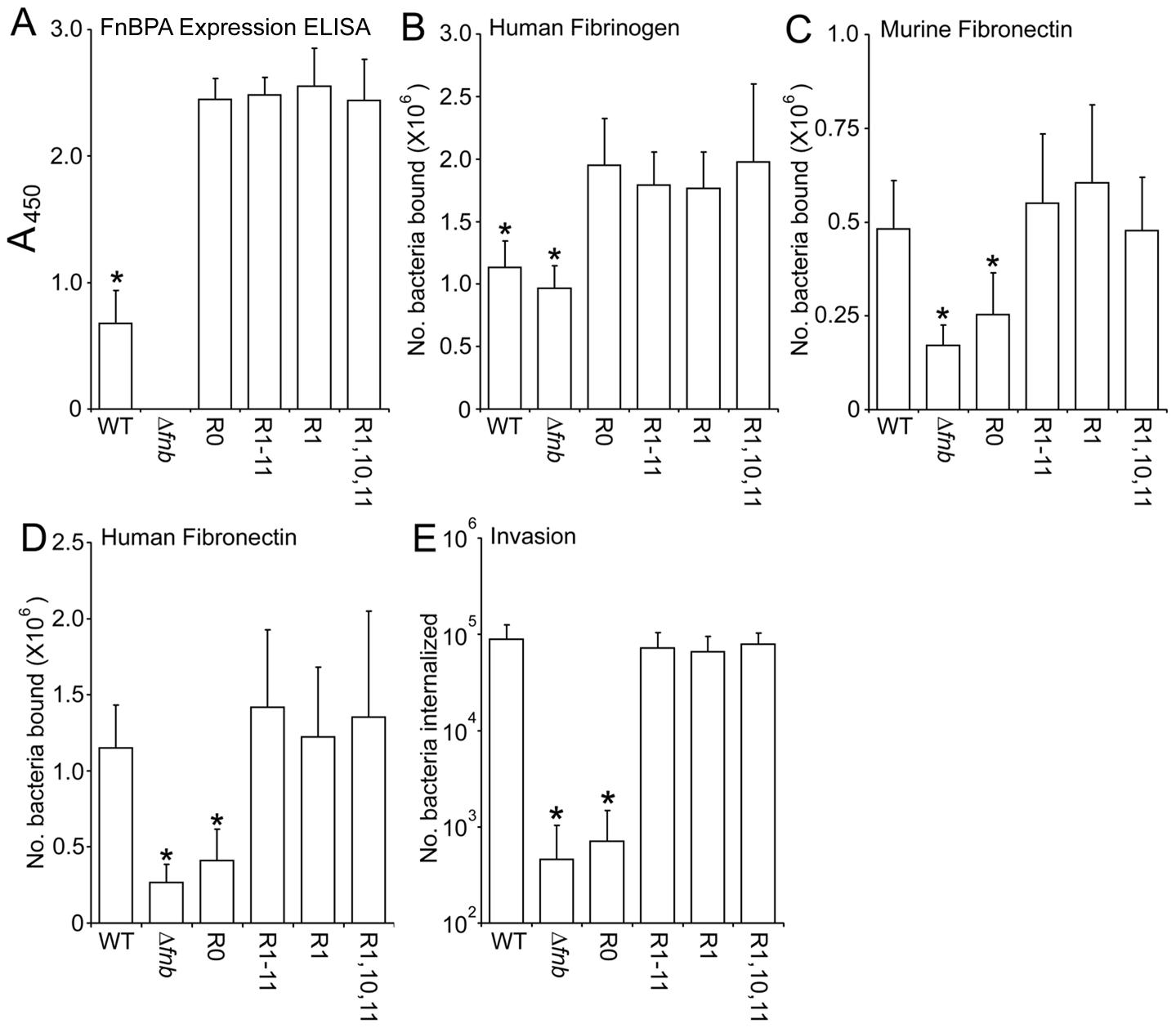 Expression levels and phenotype of <i>S. aureus</i> LS-1 expressing FnBPA variants.