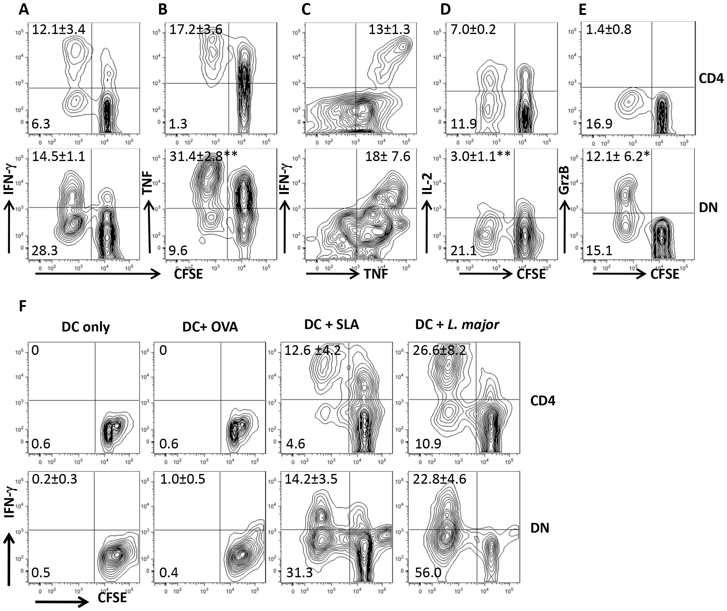 DN T cells from healed mice proliferate and produce effector cytokines following restimulation with <i>L. major</i>-infected BMDCs <i>in vitro</i>.