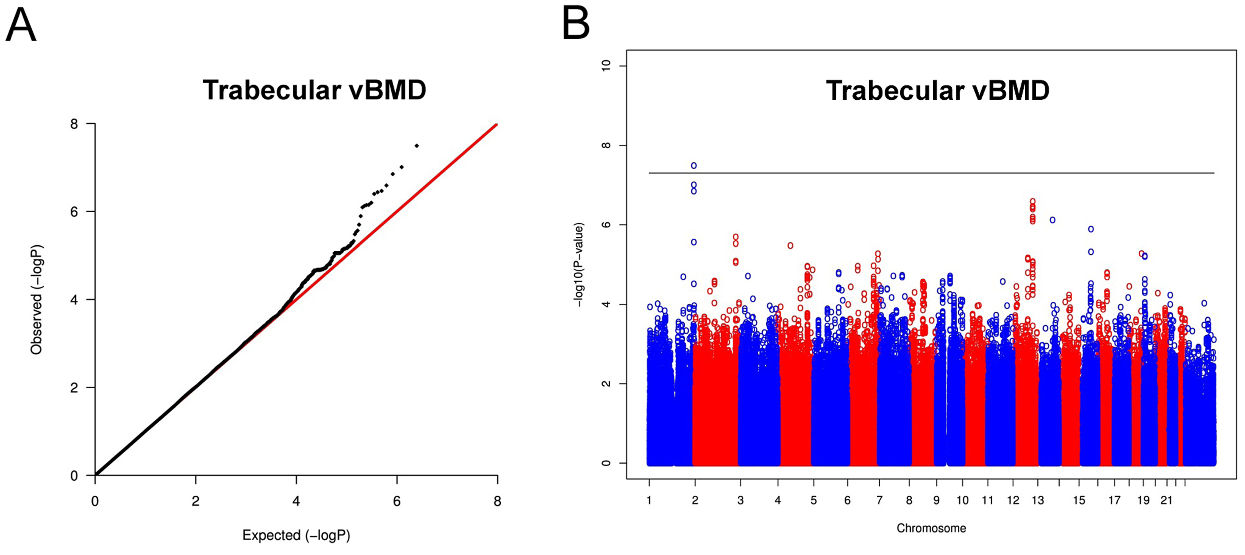 Genome-wide meta-analysis of trabecular vBMD.