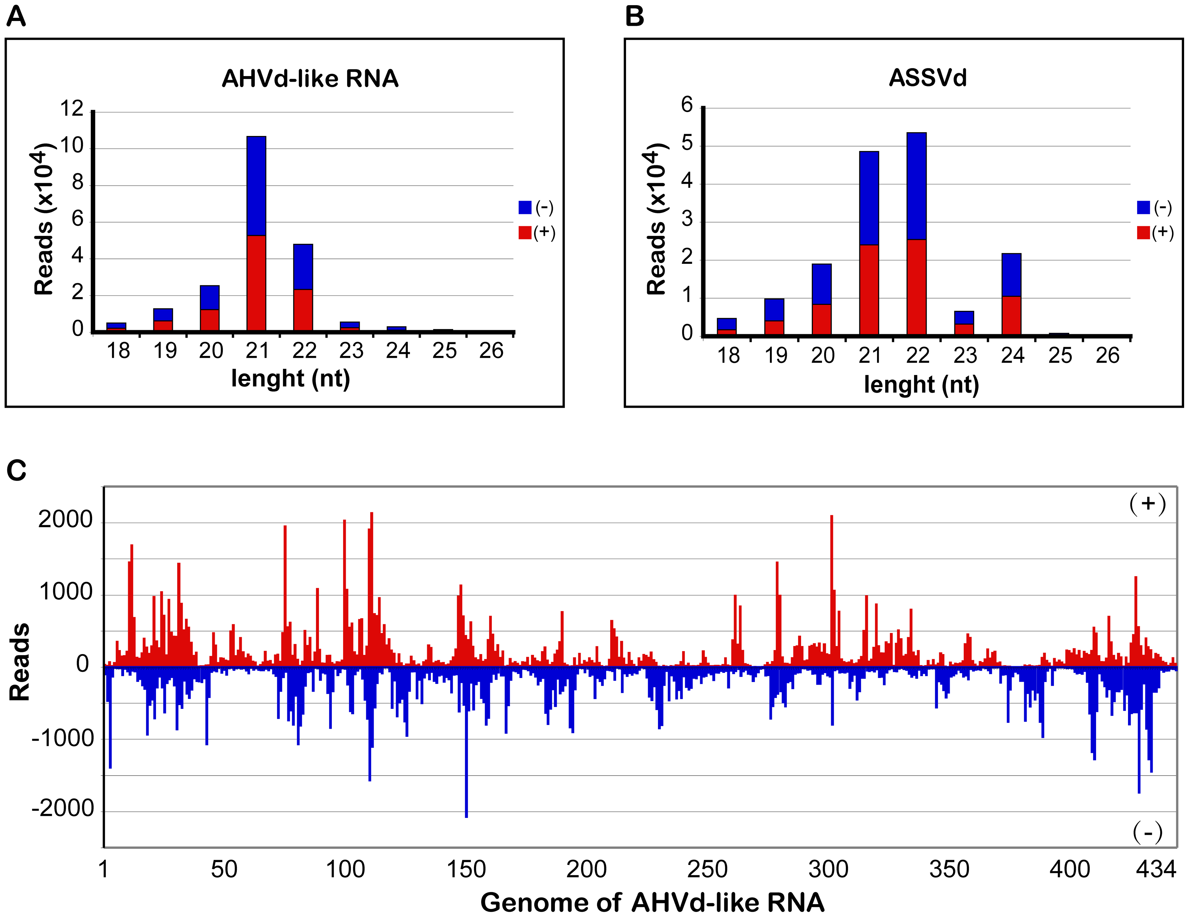 Size distribution and mapping of AHVd-like RNA-specific sRNAs on the AHVd-like RNA genome.