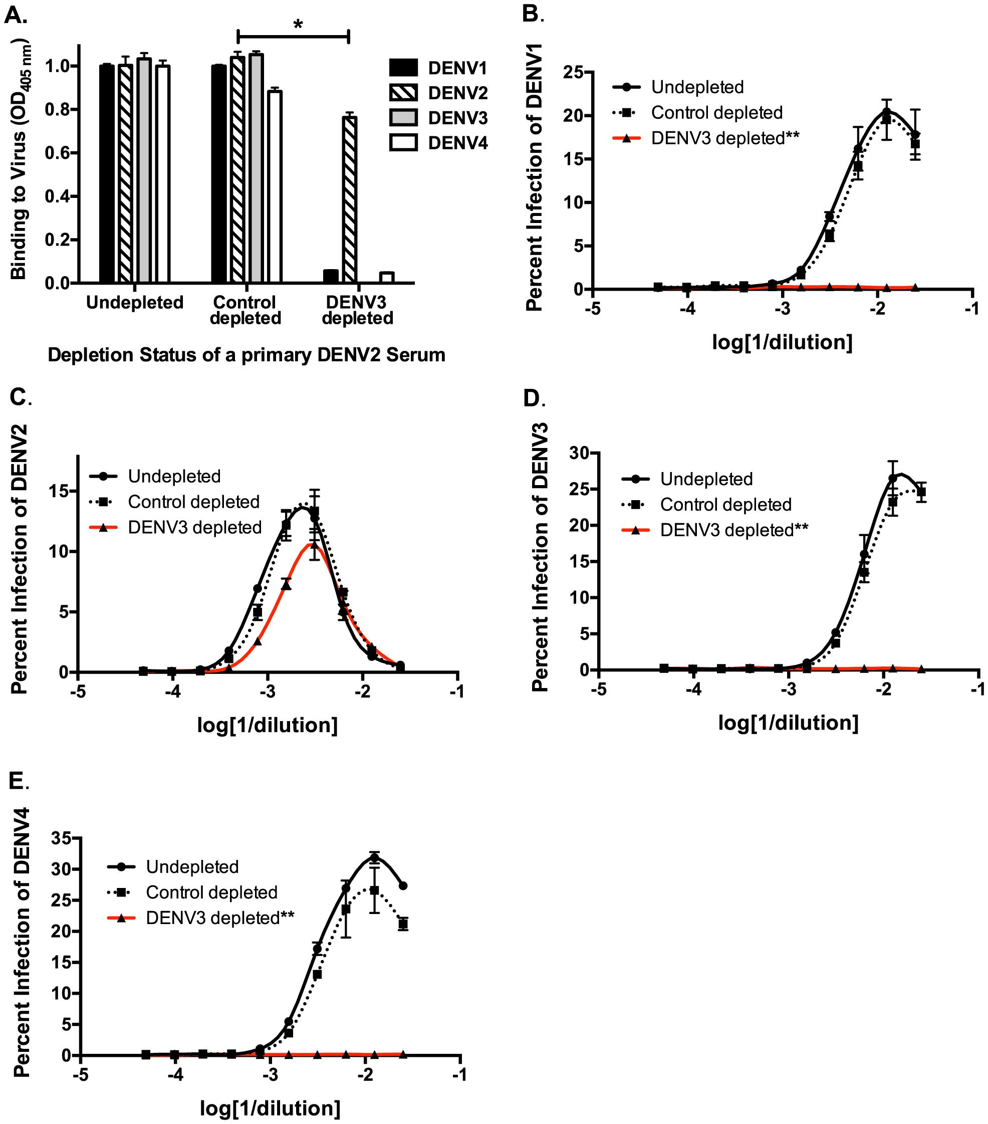 Removal of cross-reactive antibodies from primary DENV2-immune sera, eliminates enhancement of heterotypic DENV infection <i>in vitro</i>.
